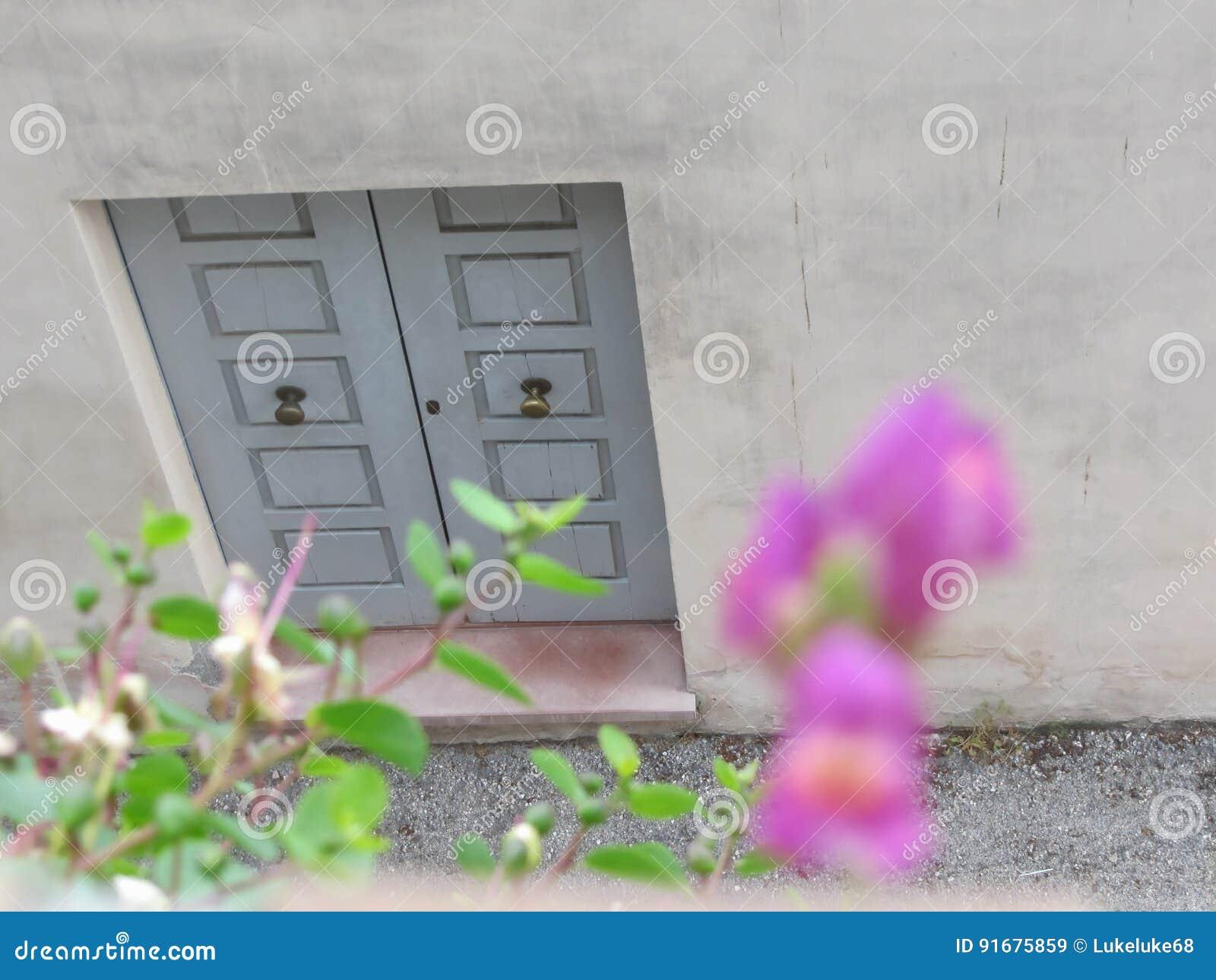 Geschlossene haustür  Geschlossene Hölzerne Haustür Zu Einem Haus Mit Unscharfen Blumen ...