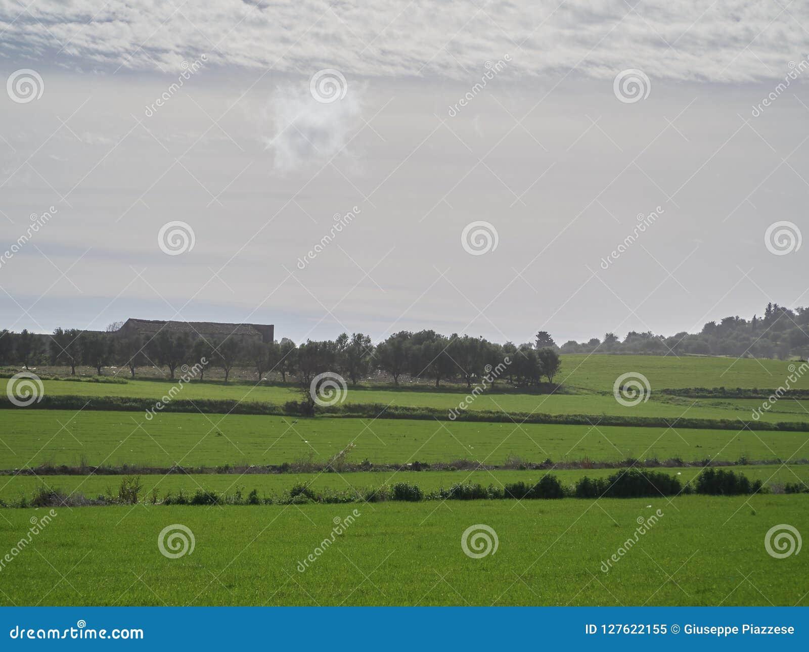 Geschossen von einer ländlichen Landschaft an einem sonnigen Tag