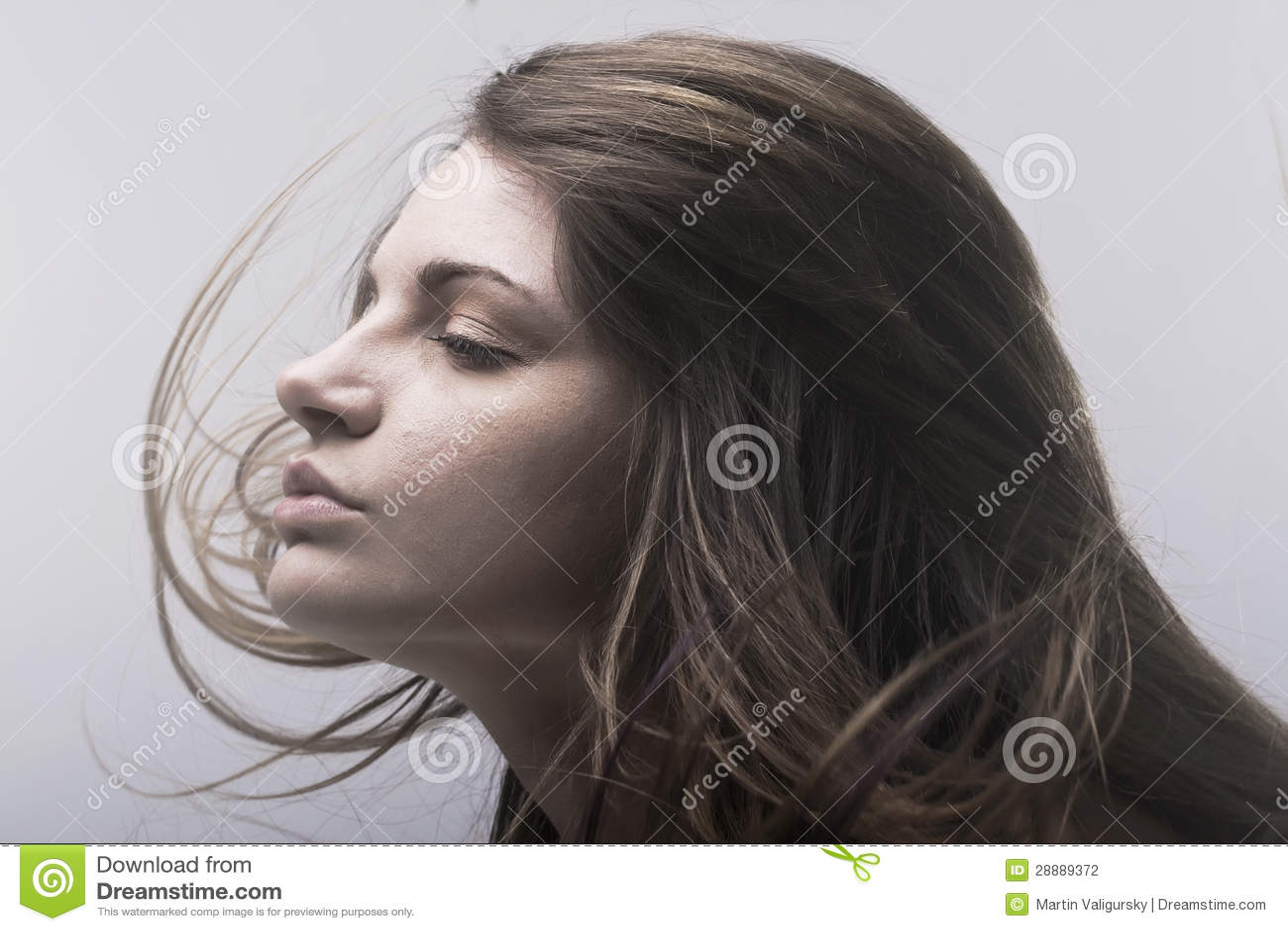 Gesicht der schönen jungen Frau mit Haarflugwesen
