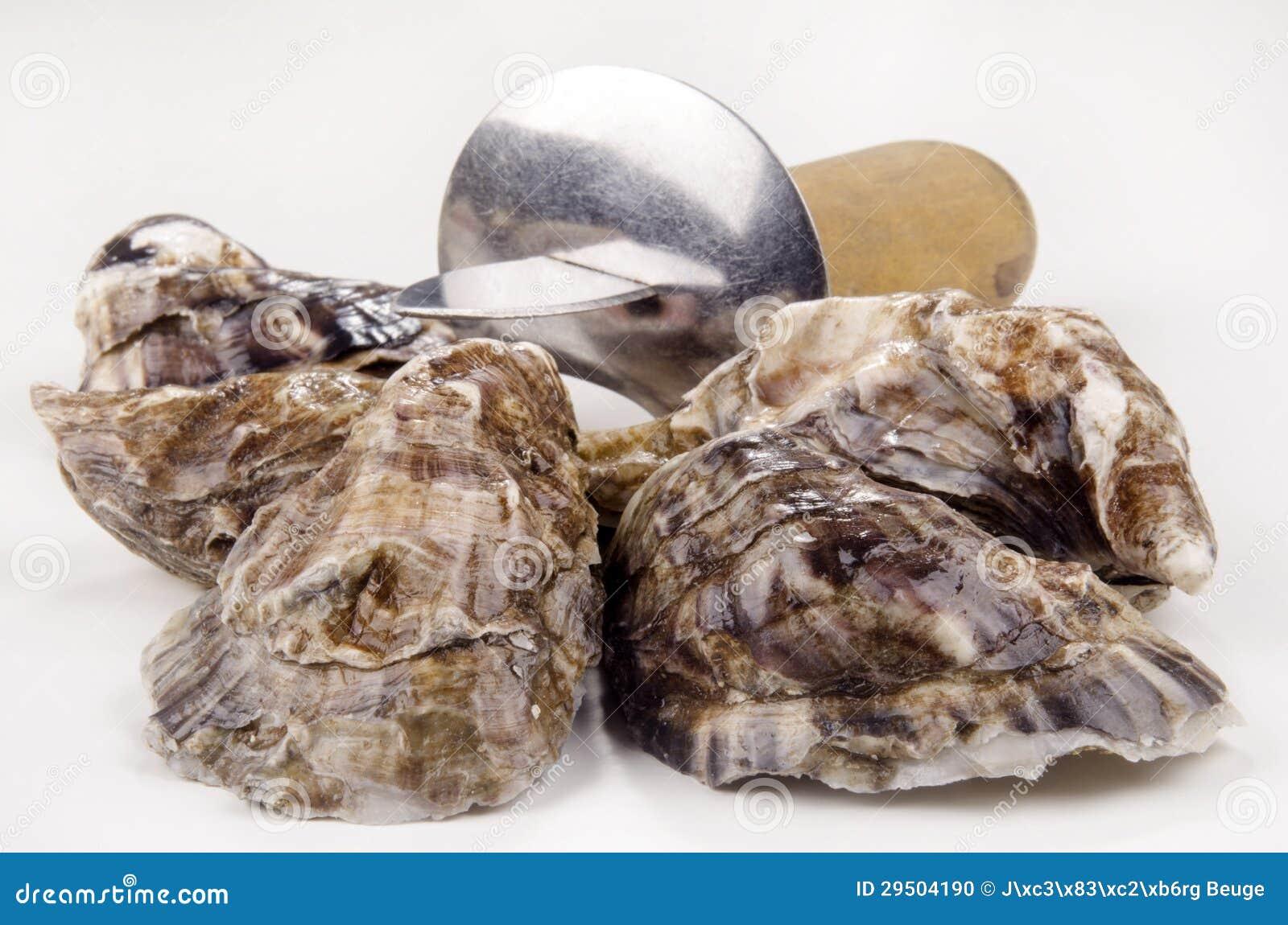 Gesloten oester en een oestermes