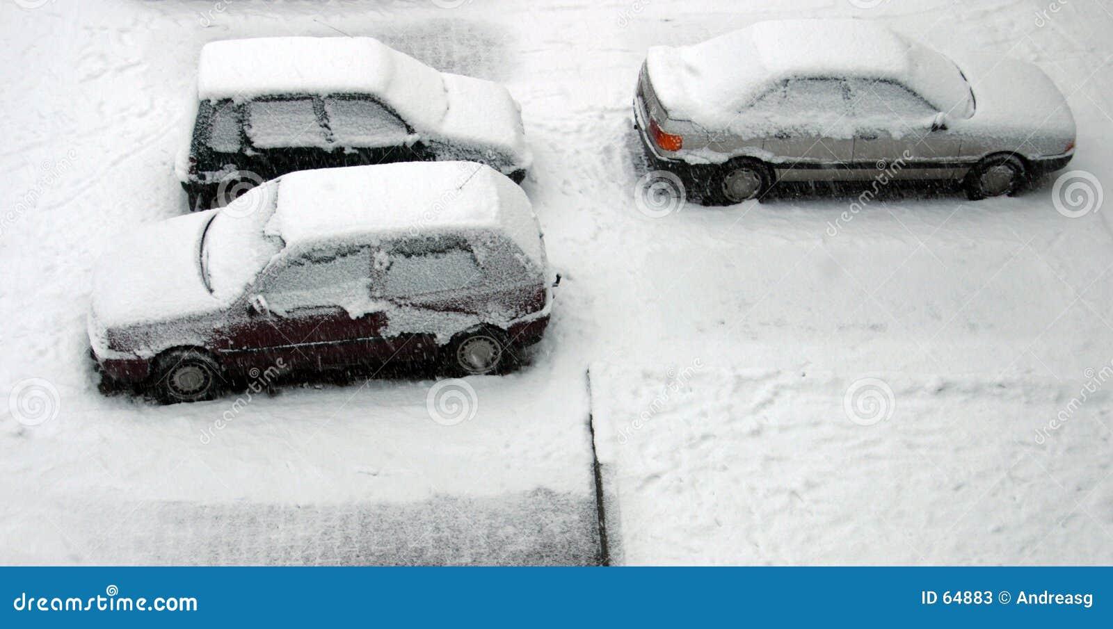 Gesneeuwde auto s