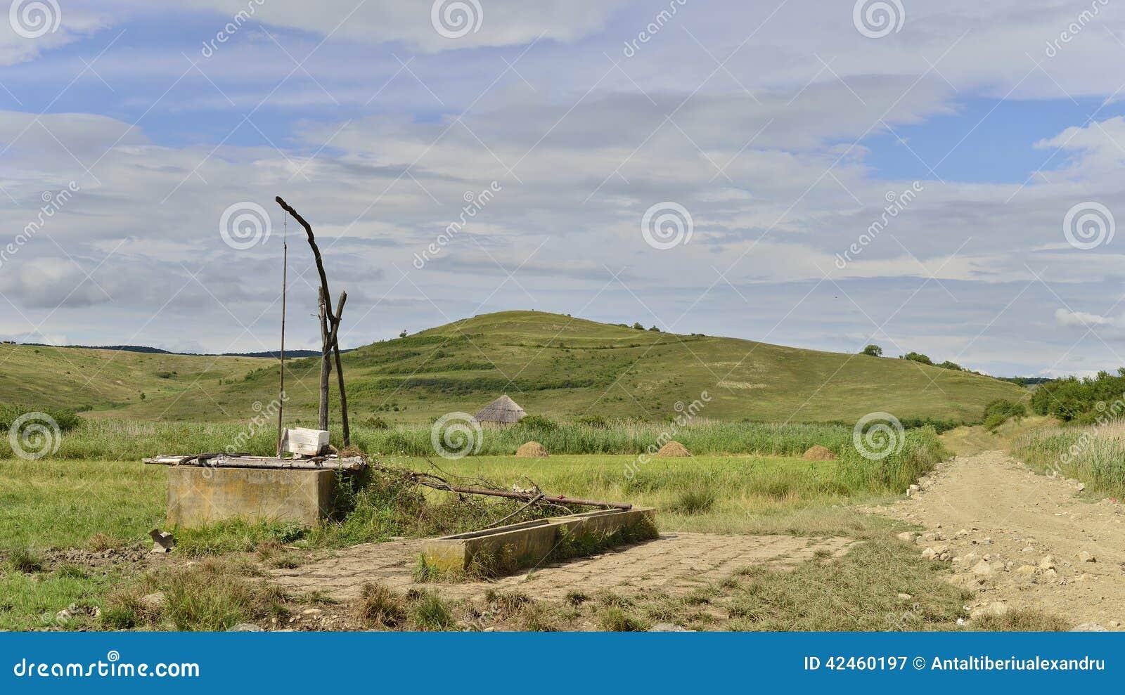 Gestalten Sie mit der natürlichen Reedreserve von sic landschaftlich und fegen Sie Brunnen