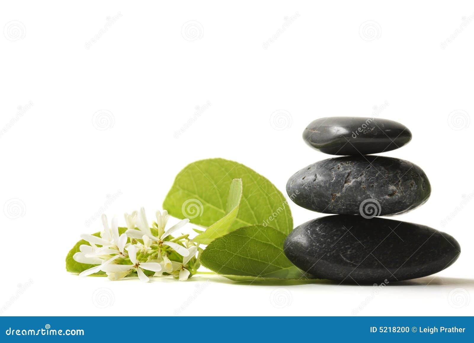 gestapelte steine mit blume stockfoto bild 5218200. Black Bedroom Furniture Sets. Home Design Ideas