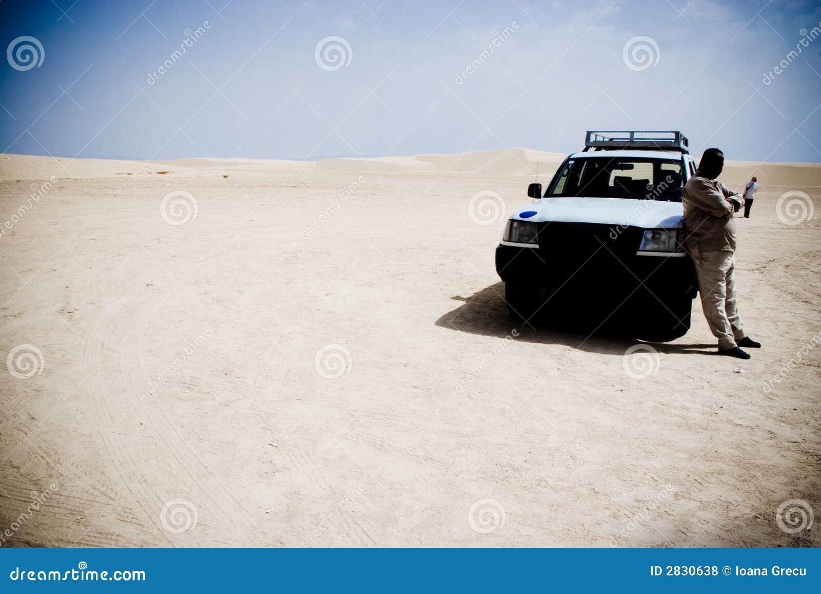 Gestionnaire de désert