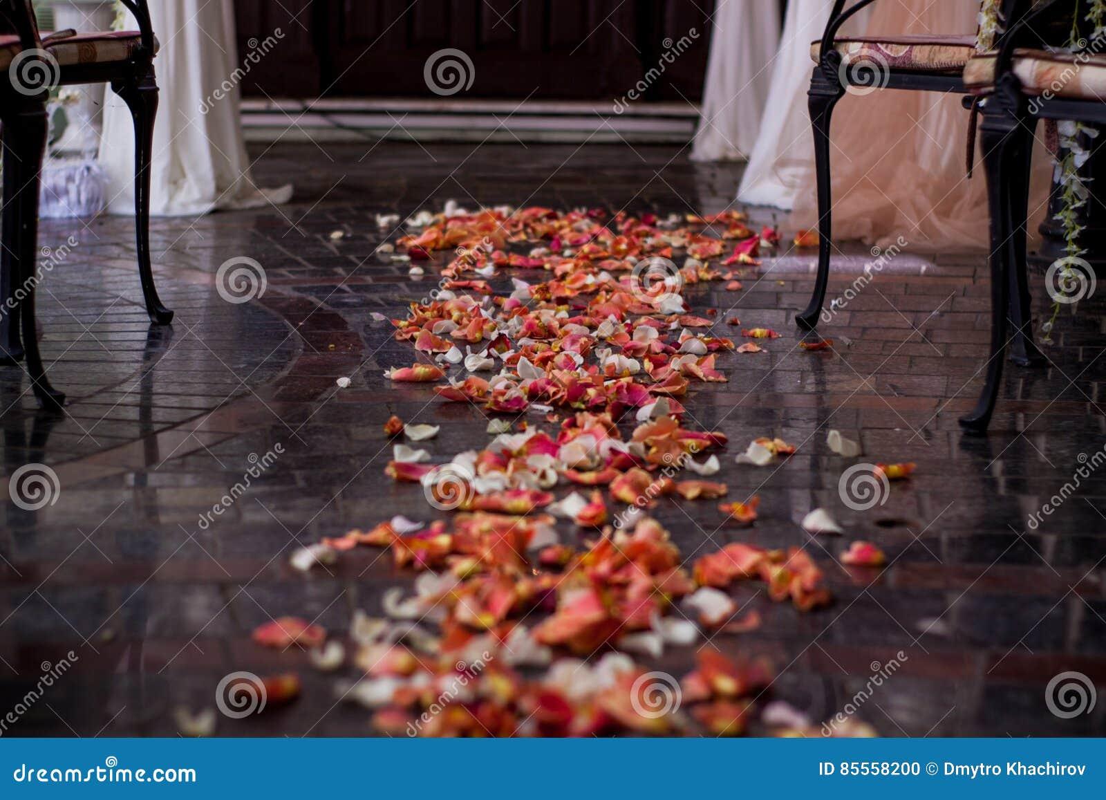 Gestreut mit Bahn der rosafarbenen Blumenblätter