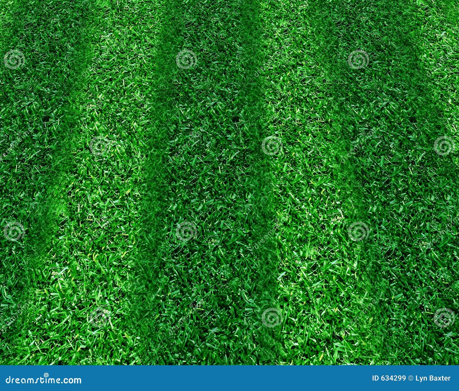 Gestript Gras