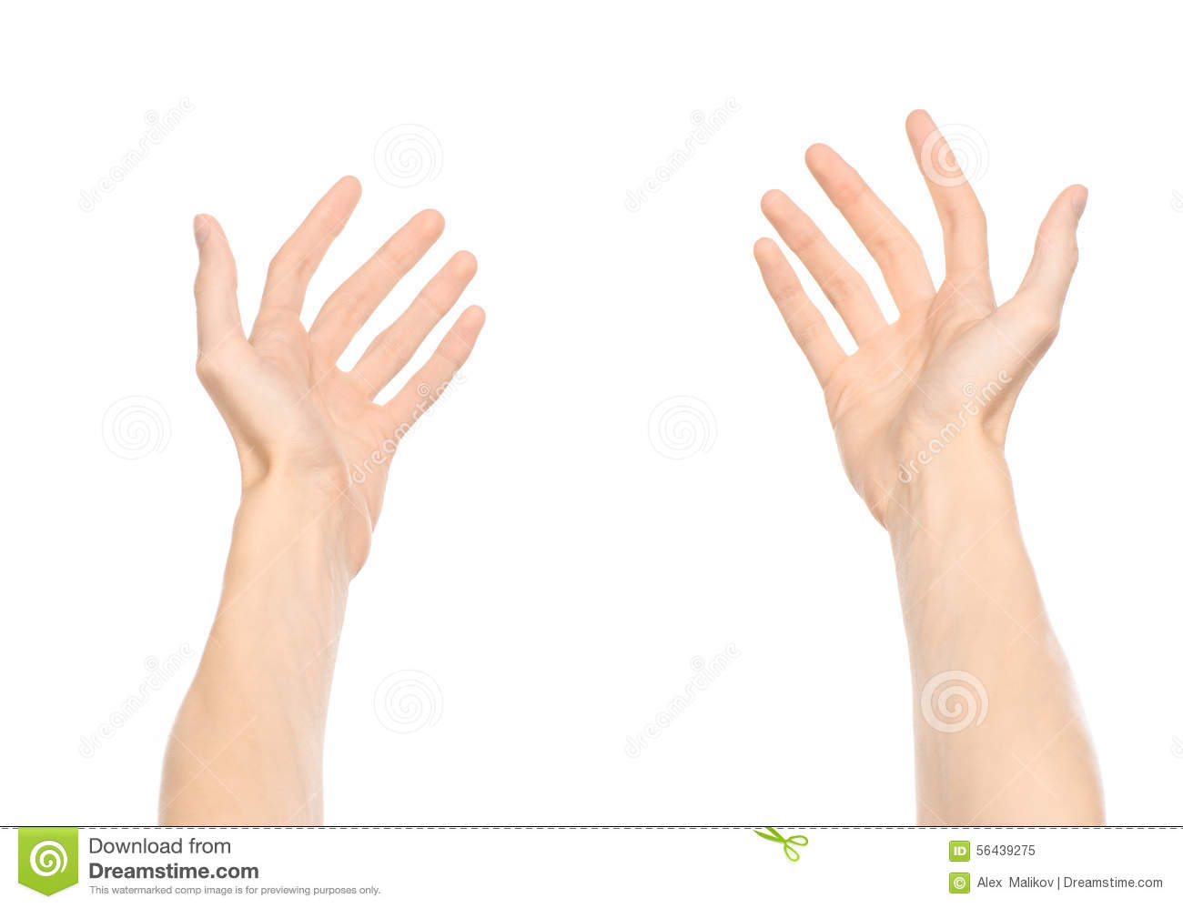 Gestures Topic: Human Hand Gestures Showing First-person ...
