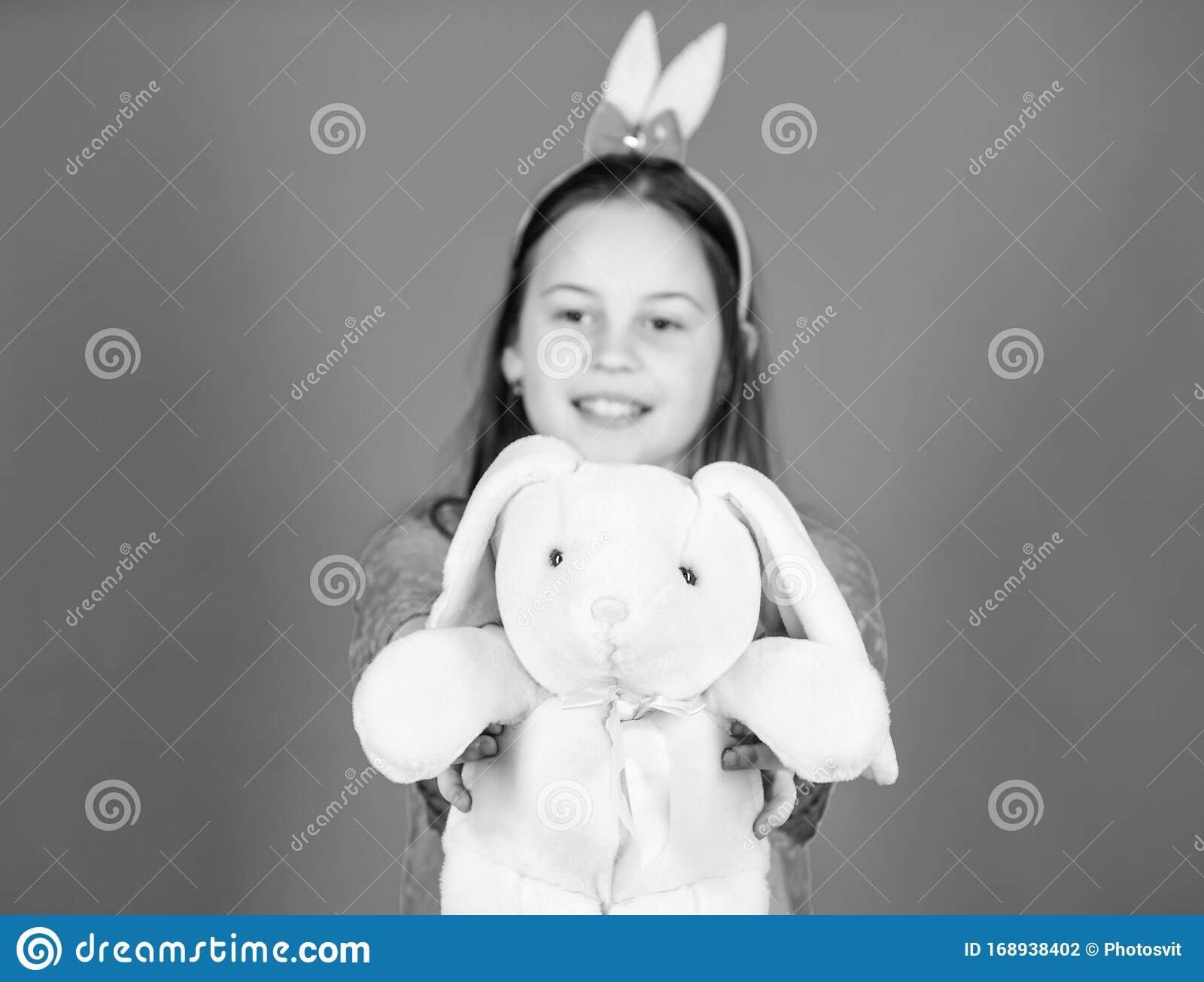 Soft Toy Bunny Accessory