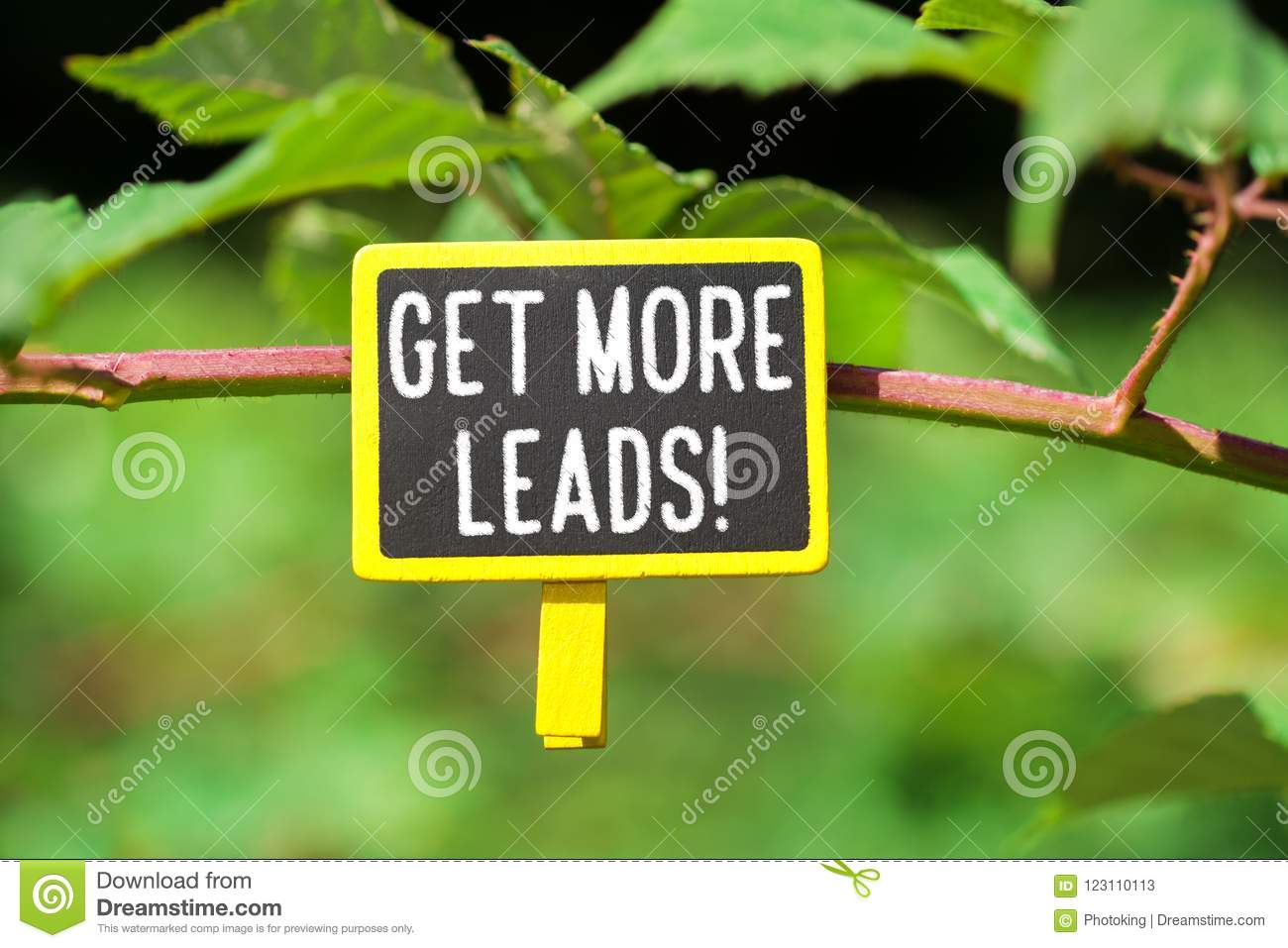 Get more leads text on board