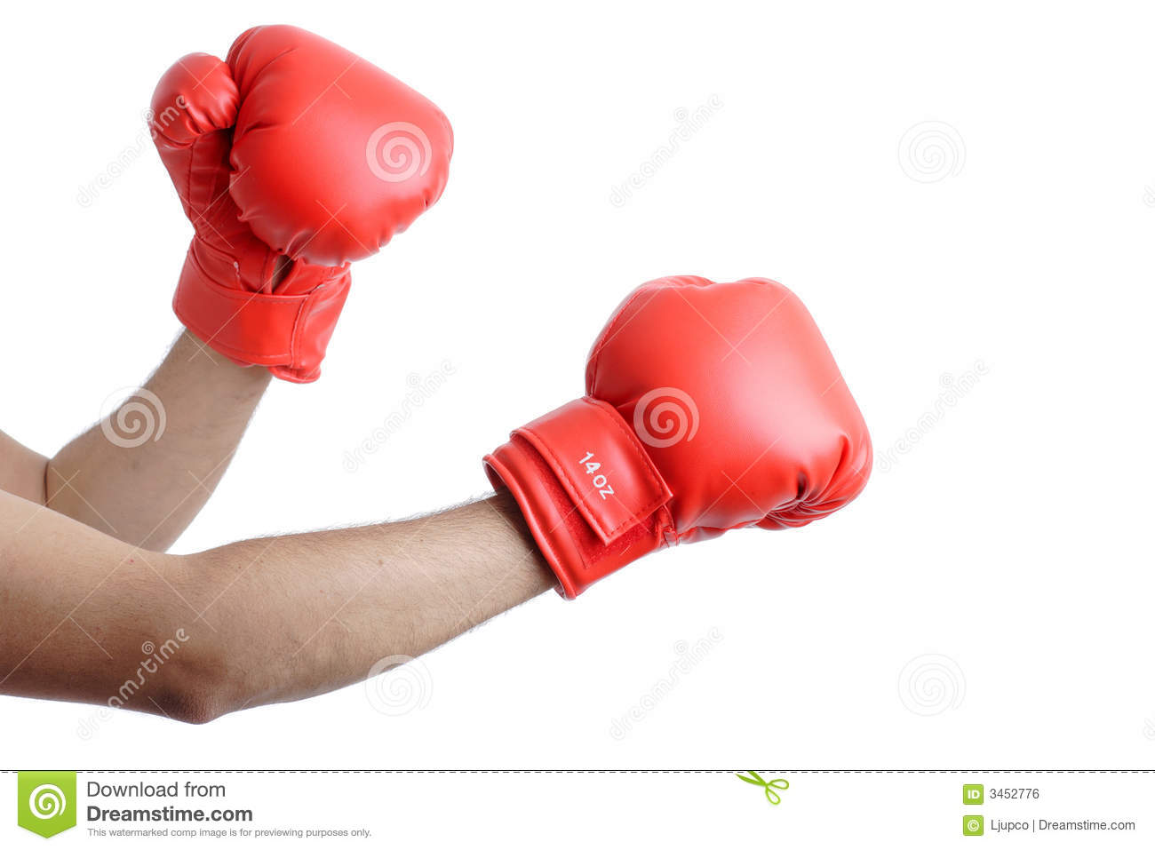 Get Ready For A Fight Stock Photo Image Of Isolated