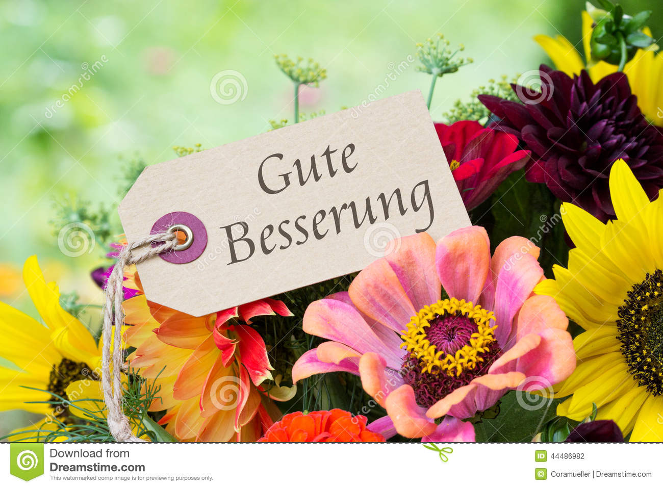 Get Well Stock Photo Image Of Lettering Flowers Summer 44486982