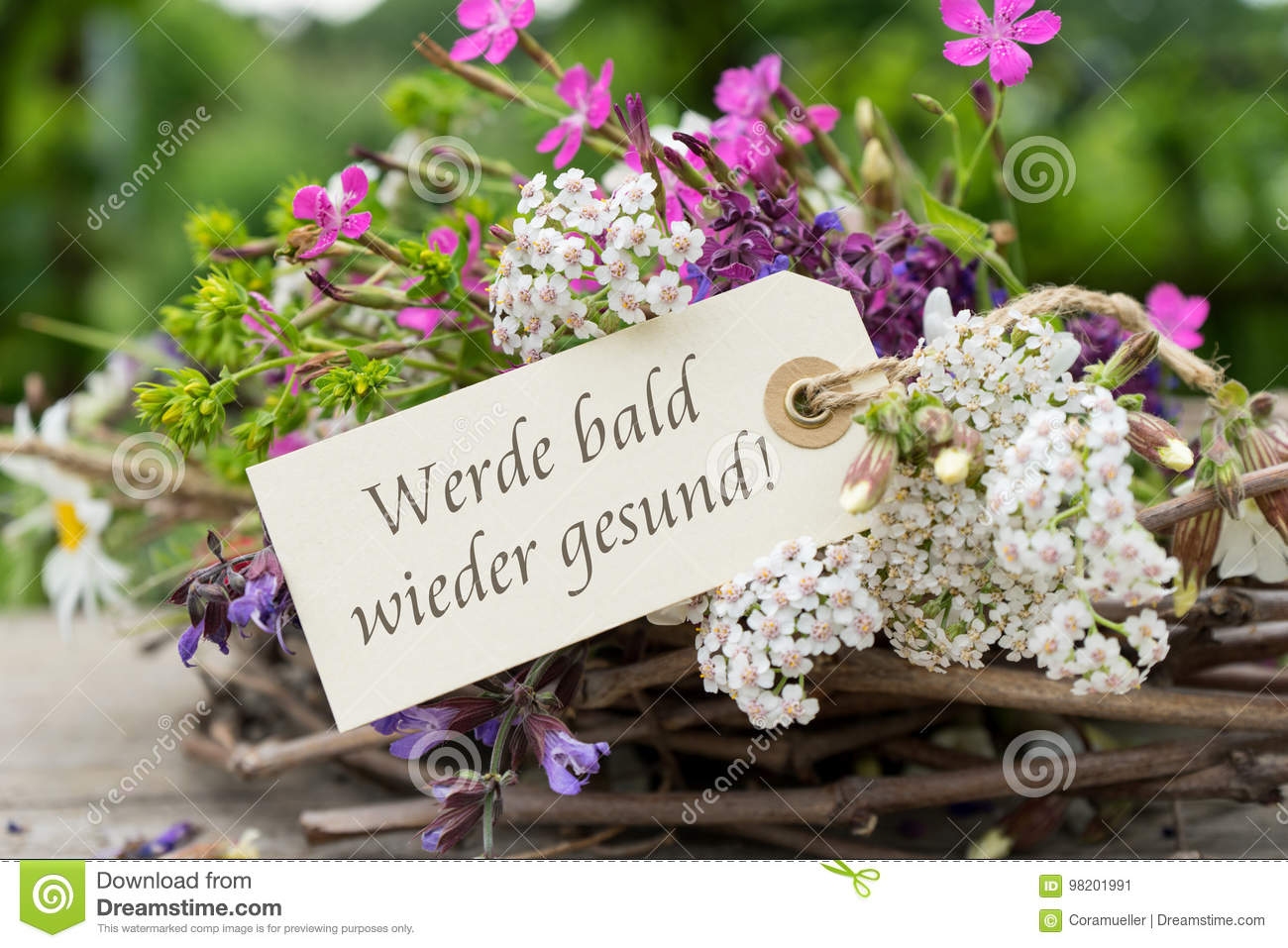 Get Well Soon Stock Image Image Of Daisy Bouquet Campion 98201991