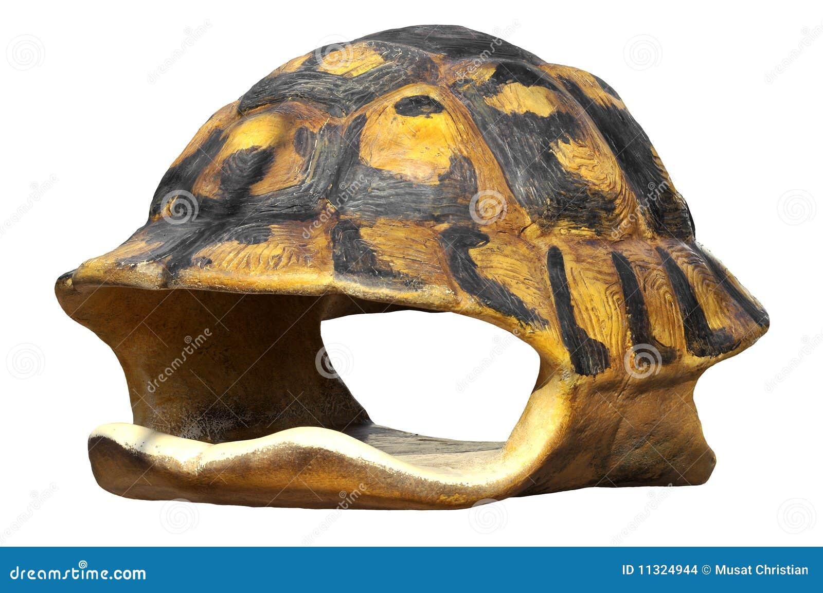 Getrenntes Shell der Schildkröte