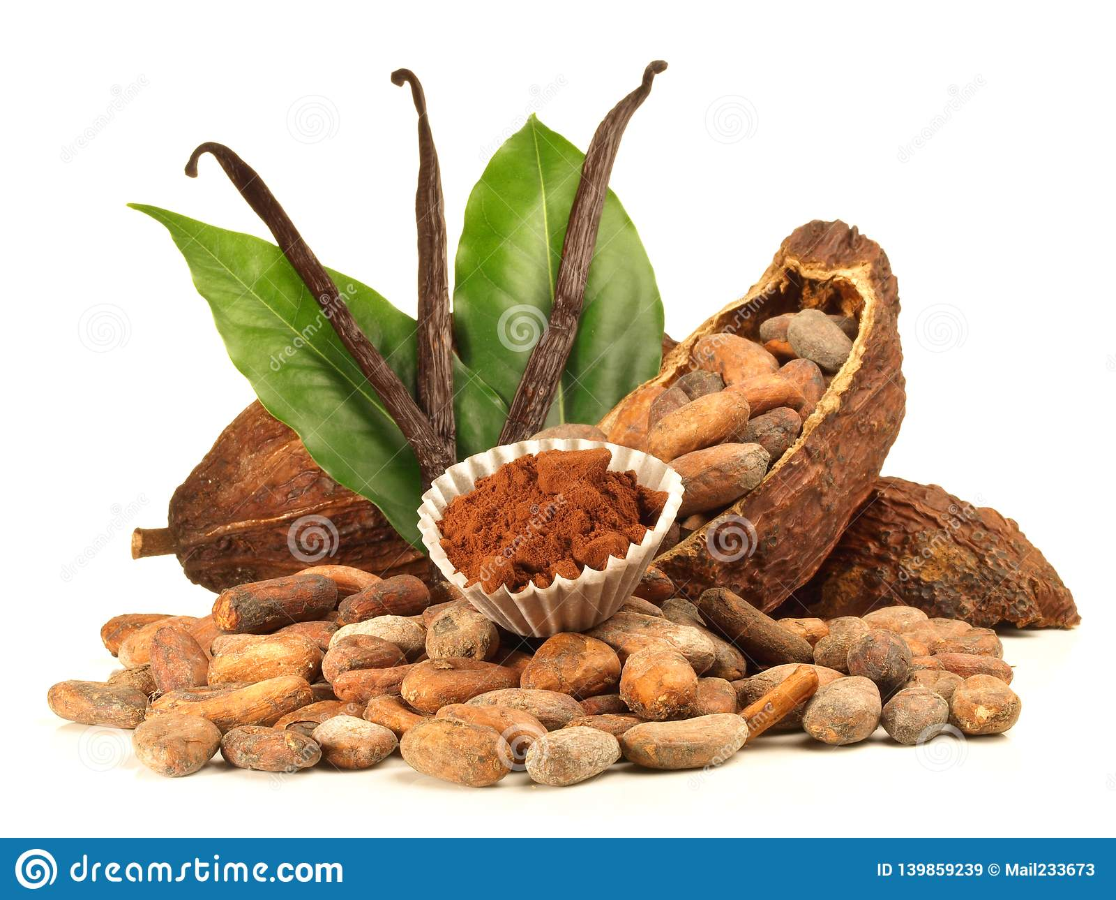 Getrocknete Kakao-Frucht und Bohnen mit Vanille