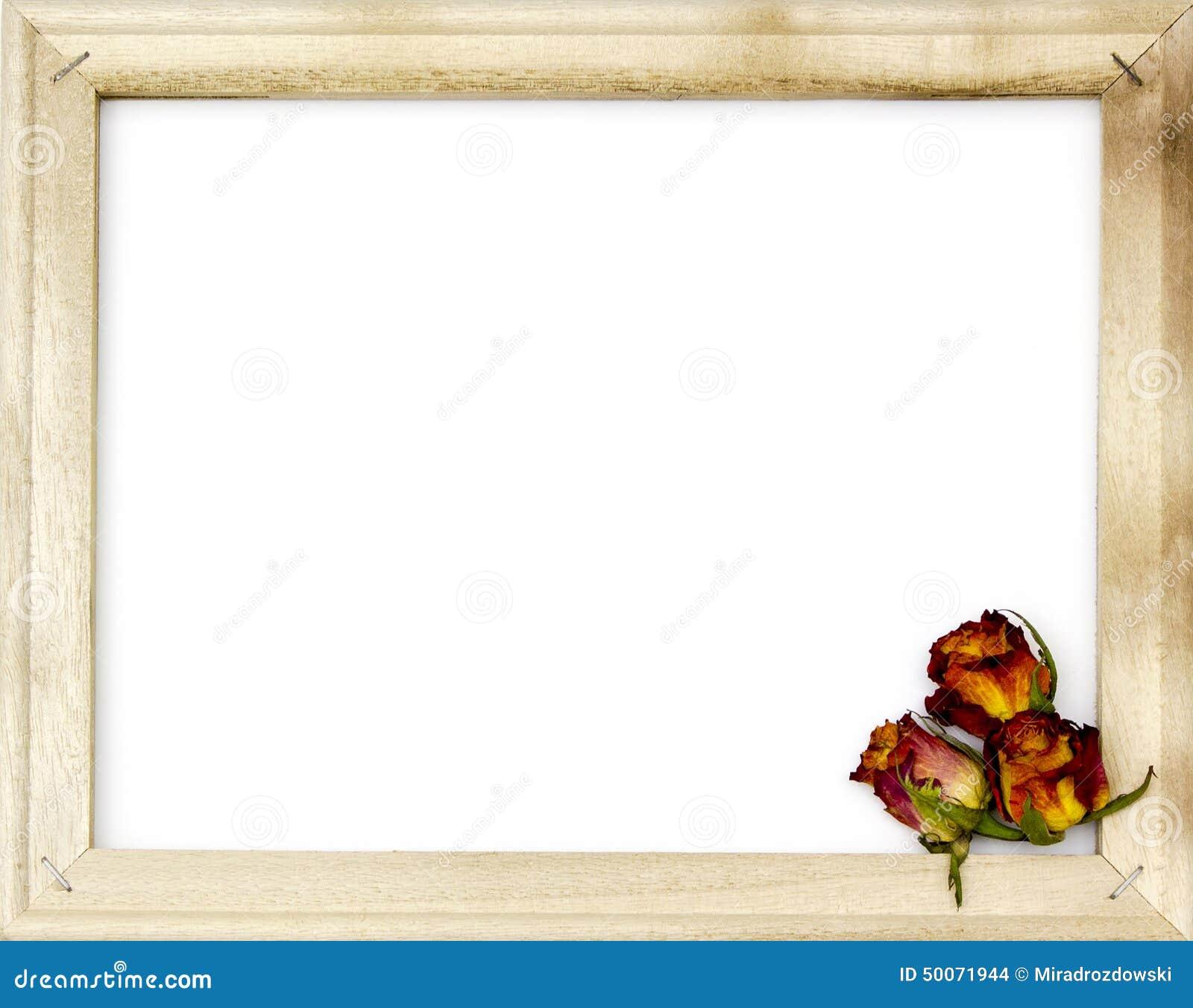 getrocknete rosen im alten bilderrahmen stockfoto bild 50071944. Black Bedroom Furniture Sets. Home Design Ideas