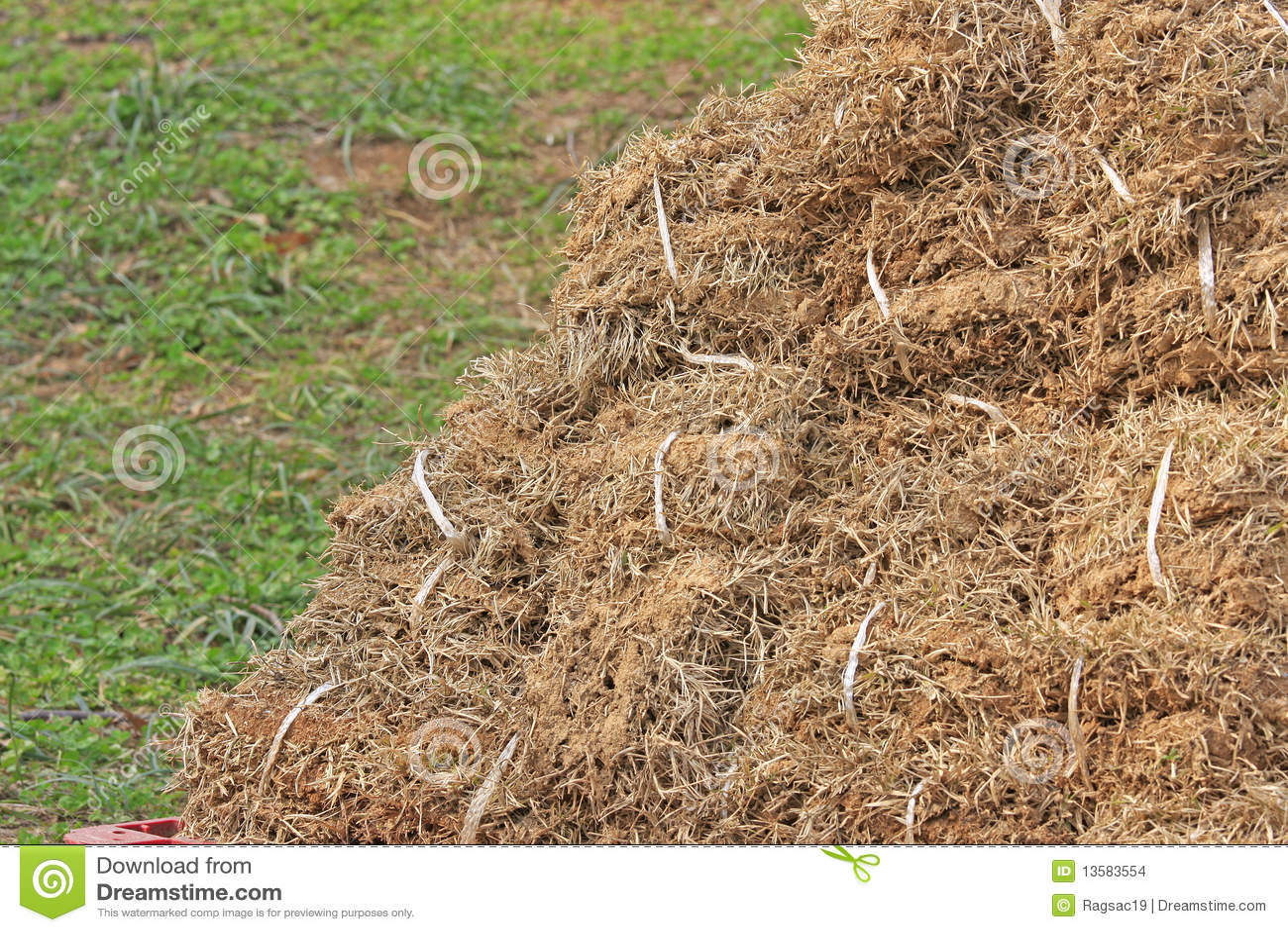 Getrocknetes Gras