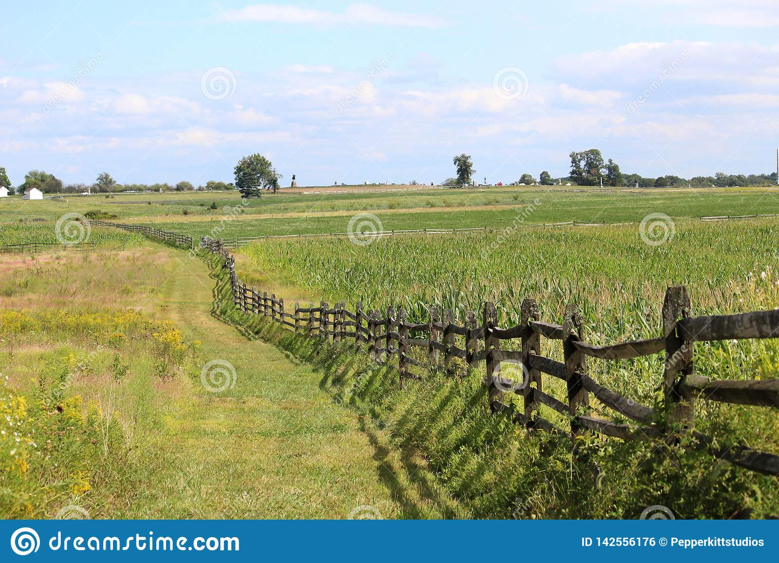 Gettysburg pole bitwy Patrzeje W kierunku Copse drzewa