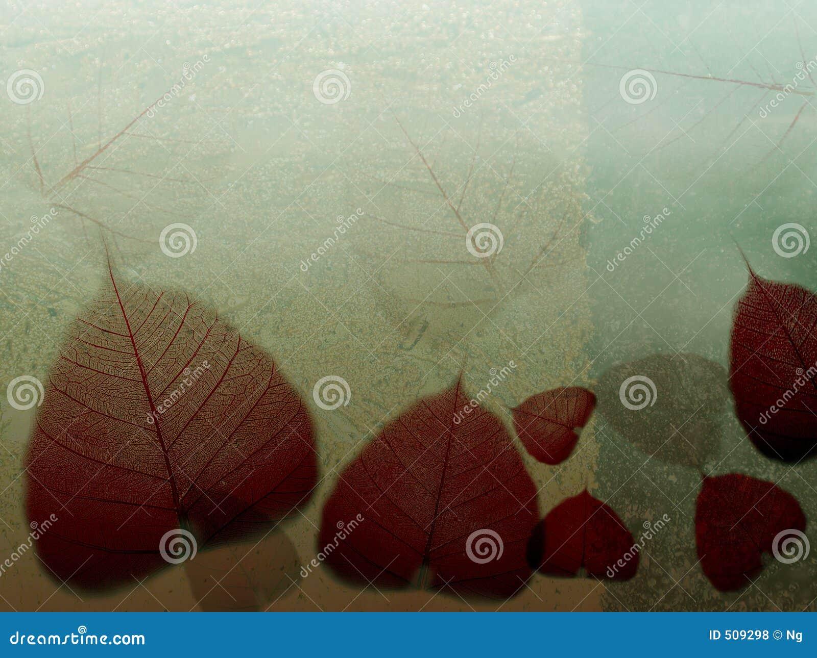 Gevallen bladeren van de fijne kunstillustratie _