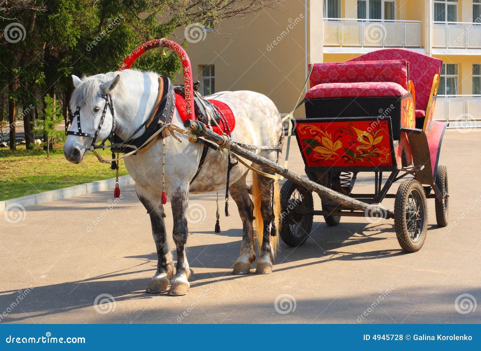 Gevlekt paard in rood toestel met een Russische traditie