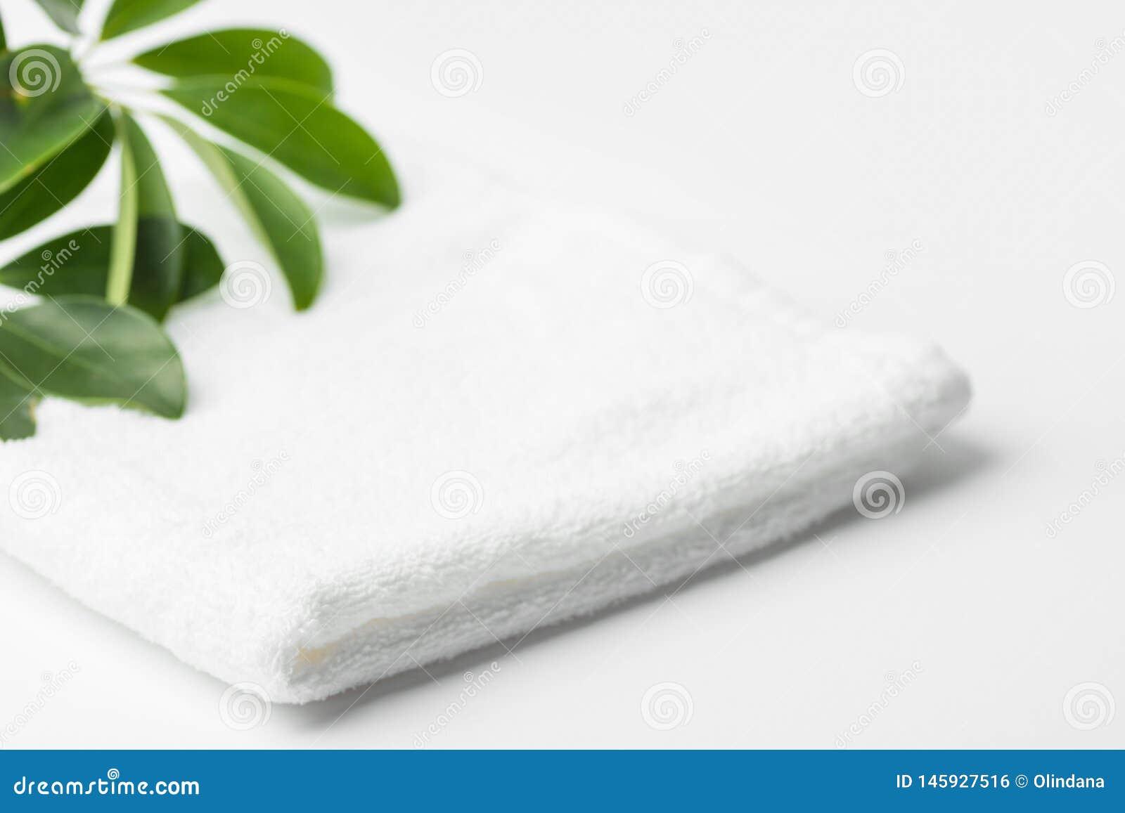 Gevouwen schone witte pluizige groene het huisinstallatie van de badstofhanddoek in badkamers Minimalistische luchtige stijl Van