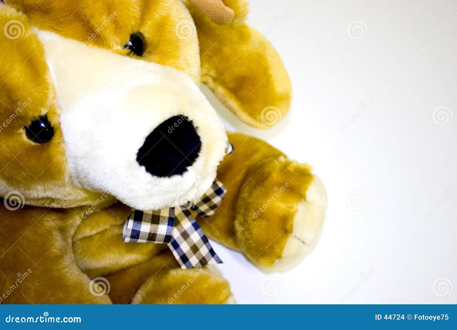 Gevuld puppy