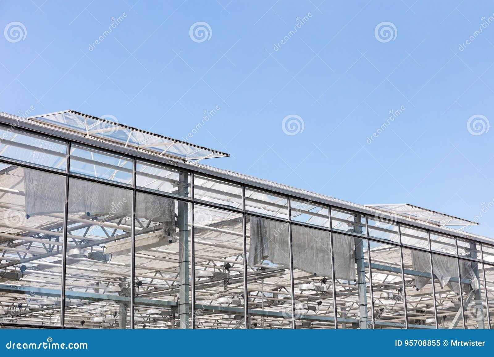 Gewachshaus Mit Offenen Fenstern Fur Beluftung Gegen Blauen Himmel