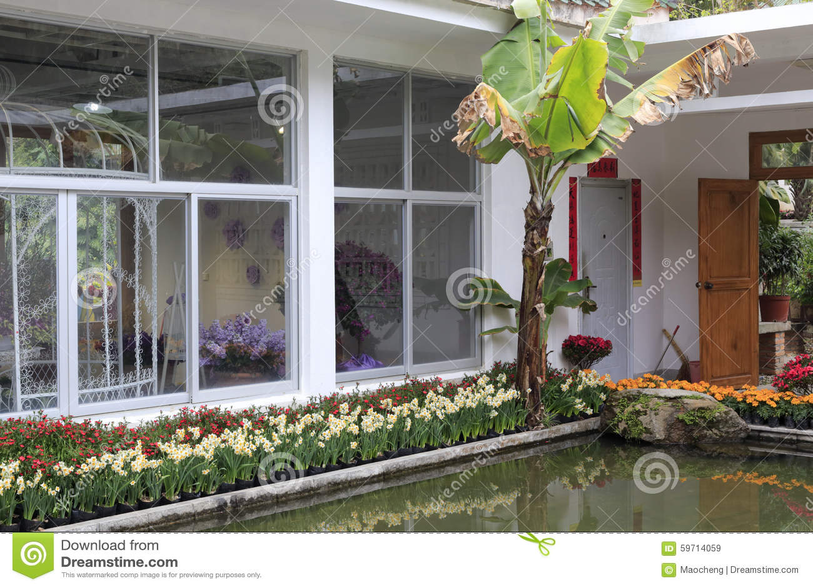 Gewachshaus Mit Pool Redaktionelles Stockbild Bild Von Baume 59714059