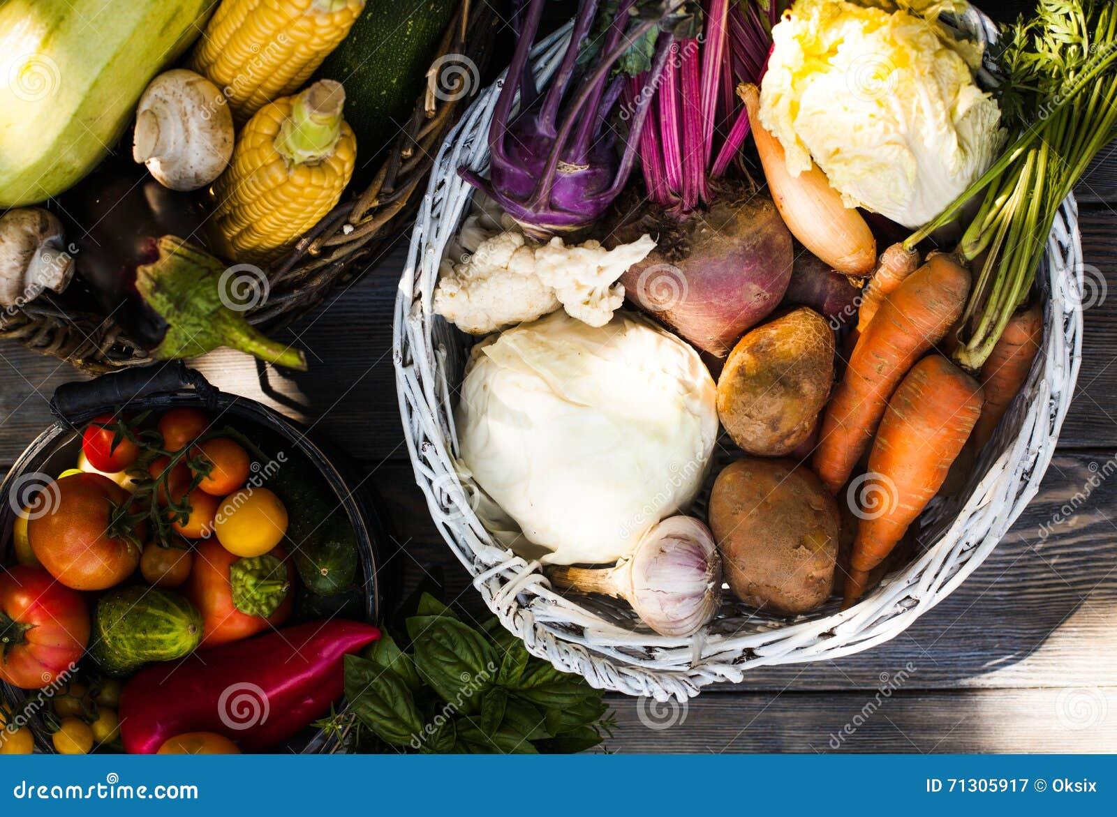 Gewas van groenten