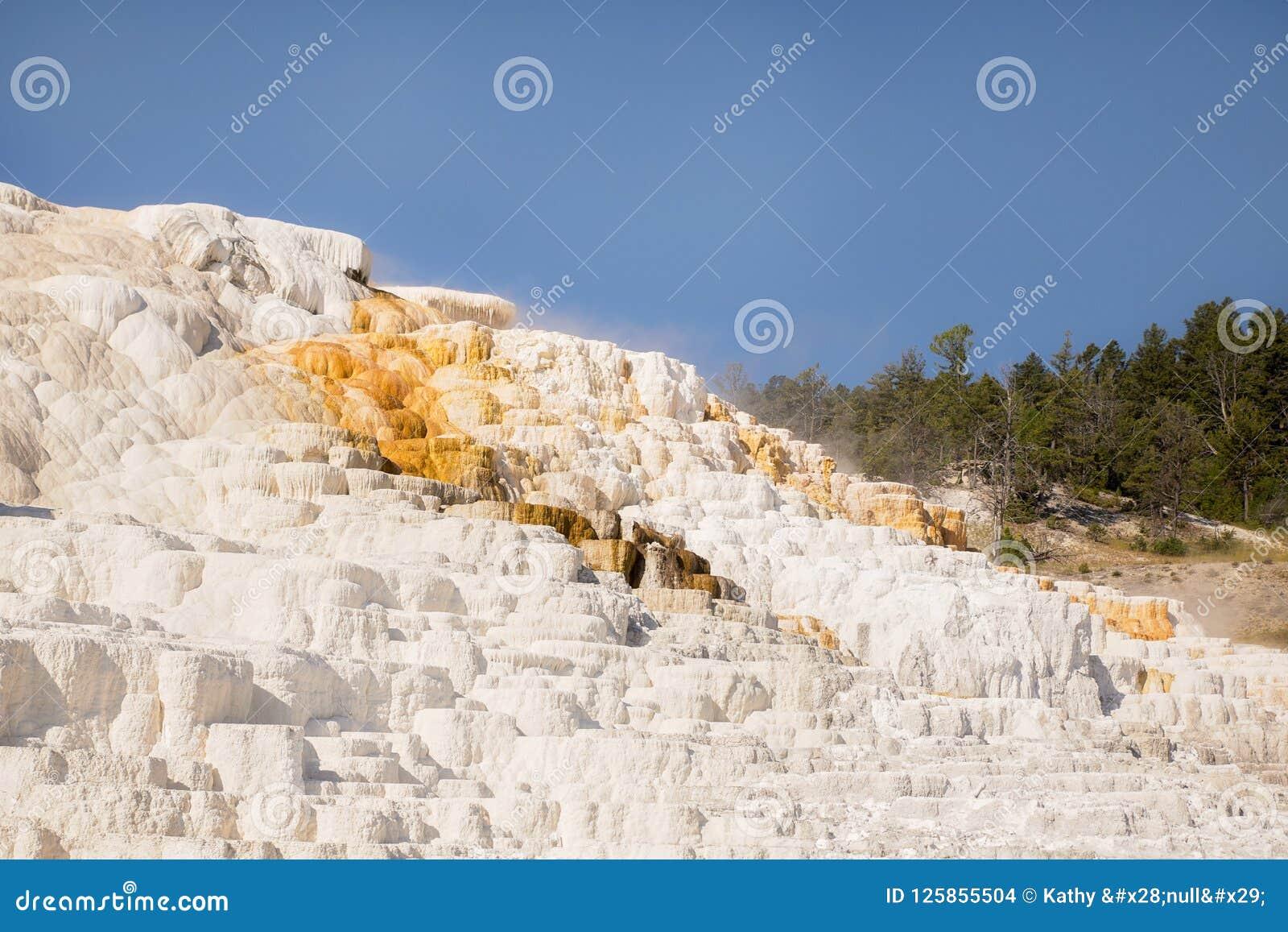 Geweven opbouw op een rots bij Mammoetdalingen