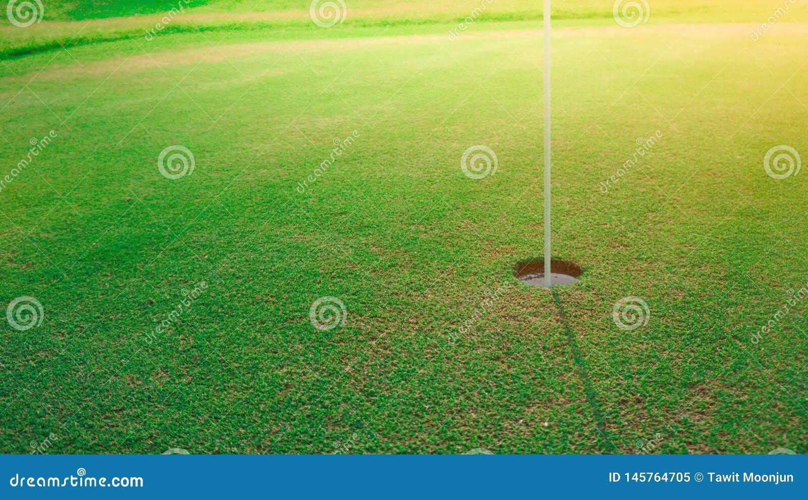 Gezet golfgat op groen