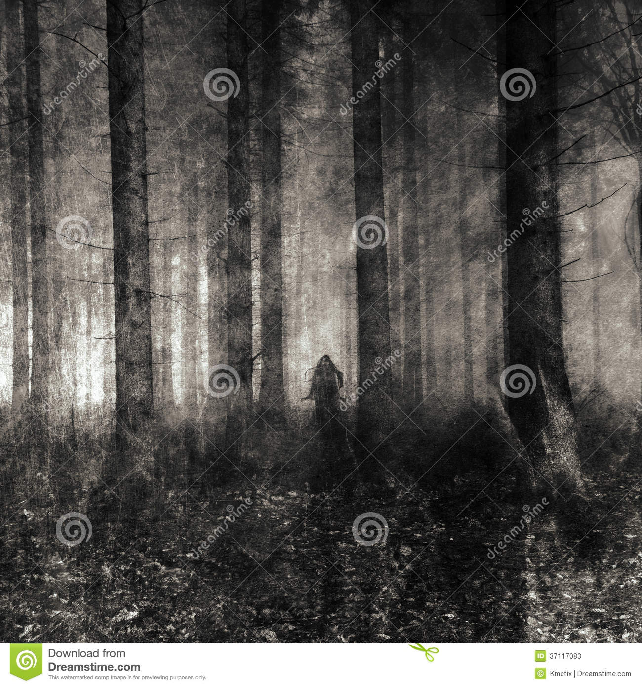 Ghost Wood Stock Image Image Of Abstract Coloring Trees 37117083