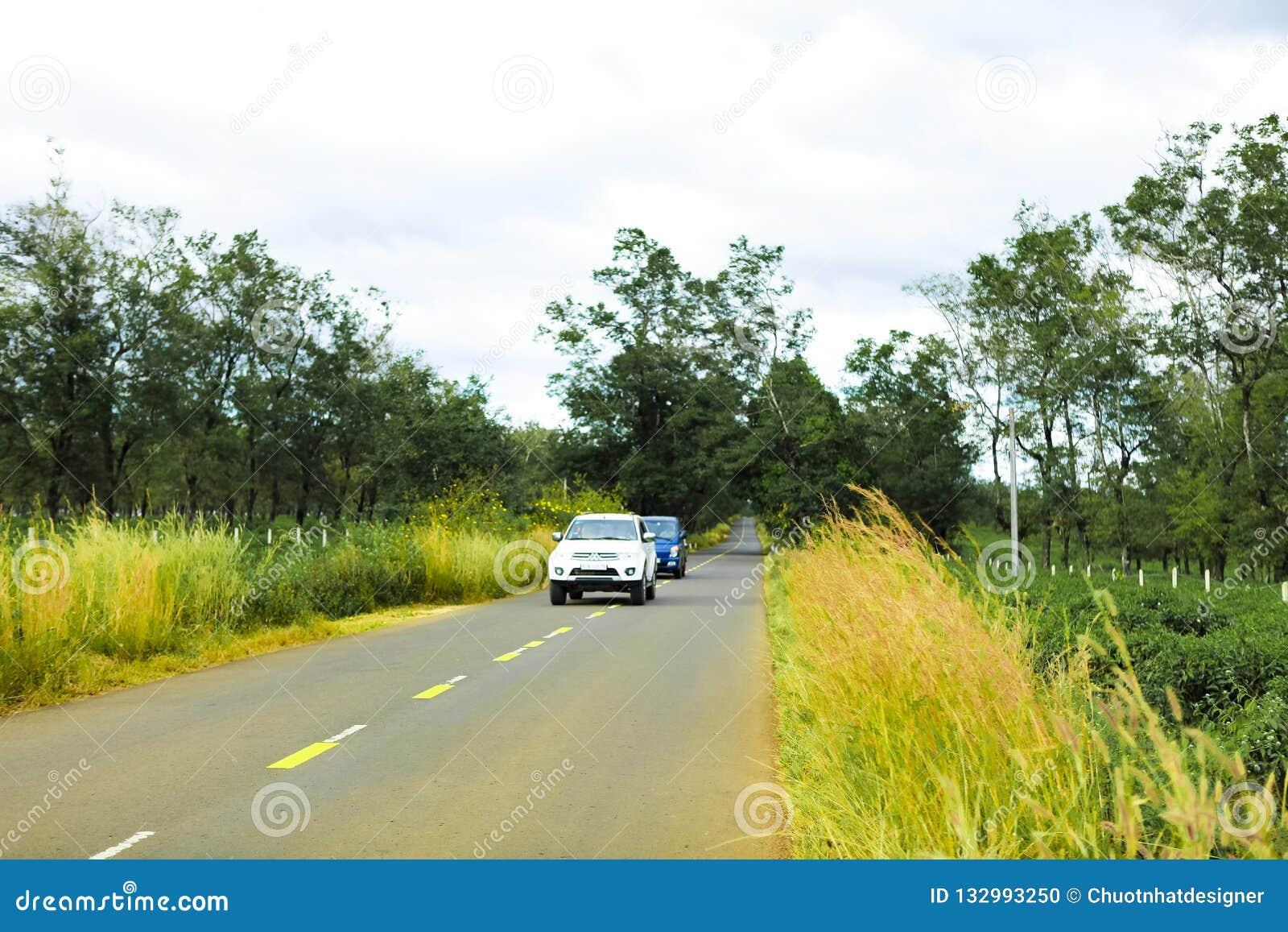Gia Lai, Vietname - 24 de novembro de 2018: A estrada bonita passa através da exploração agrícola Gia Lai Province do chá, Vietna