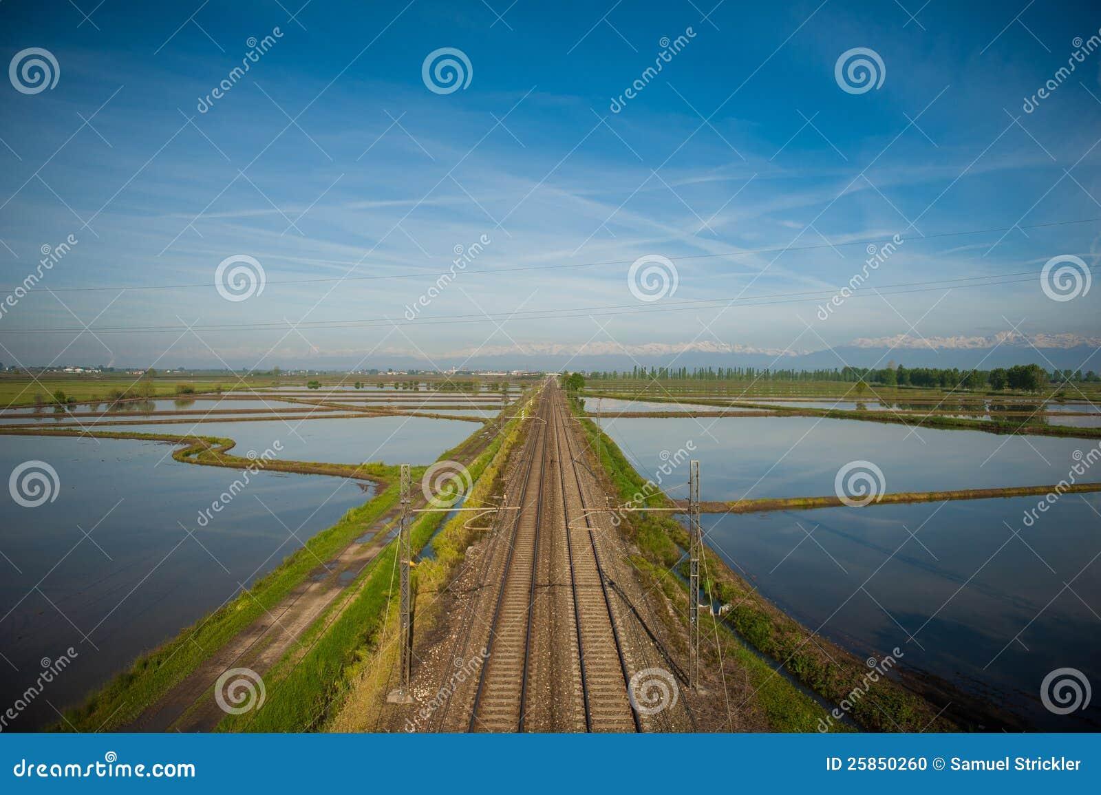 Giacimenti del riso di Vercelli