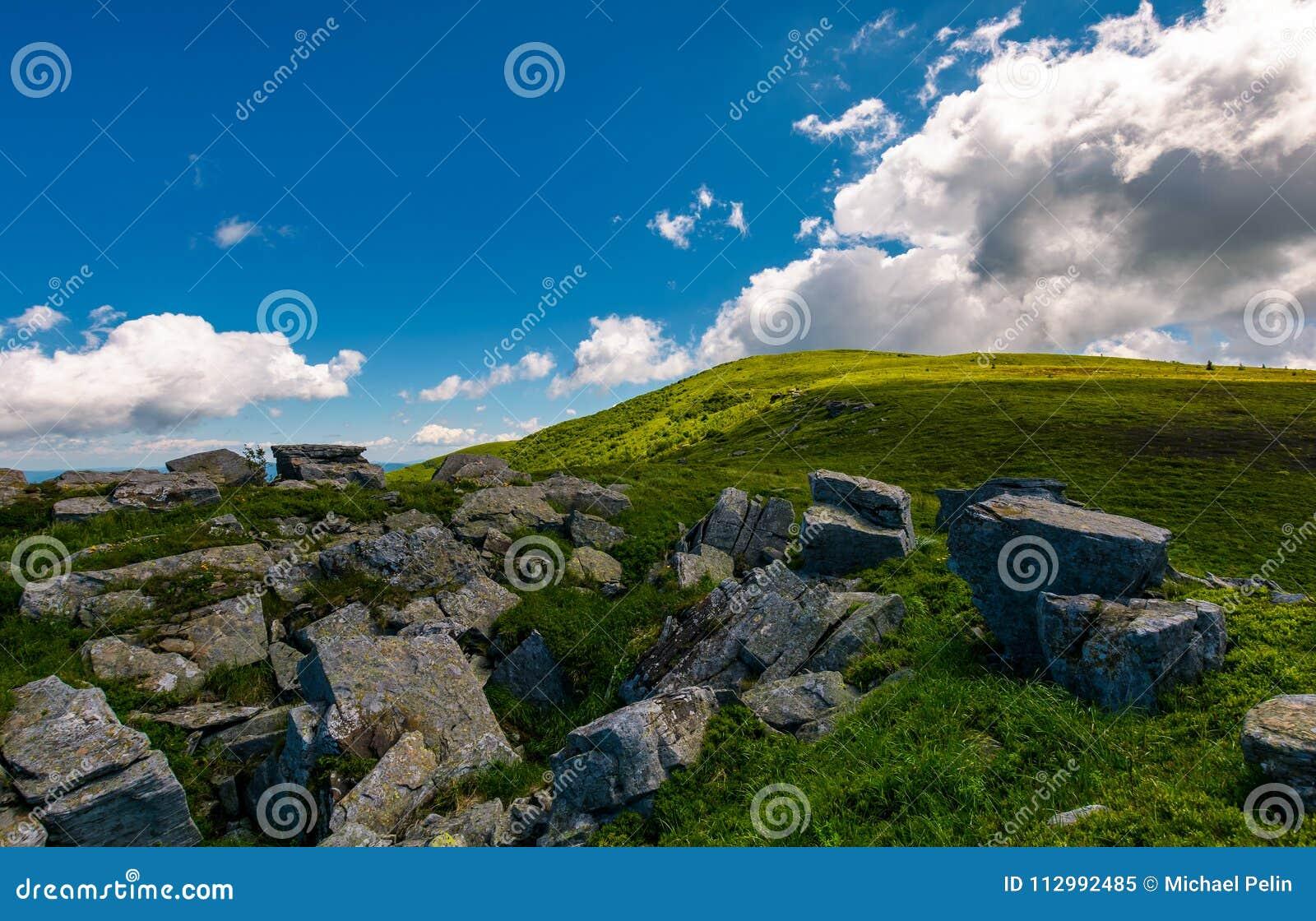 Giant boulder on the grassy hillside