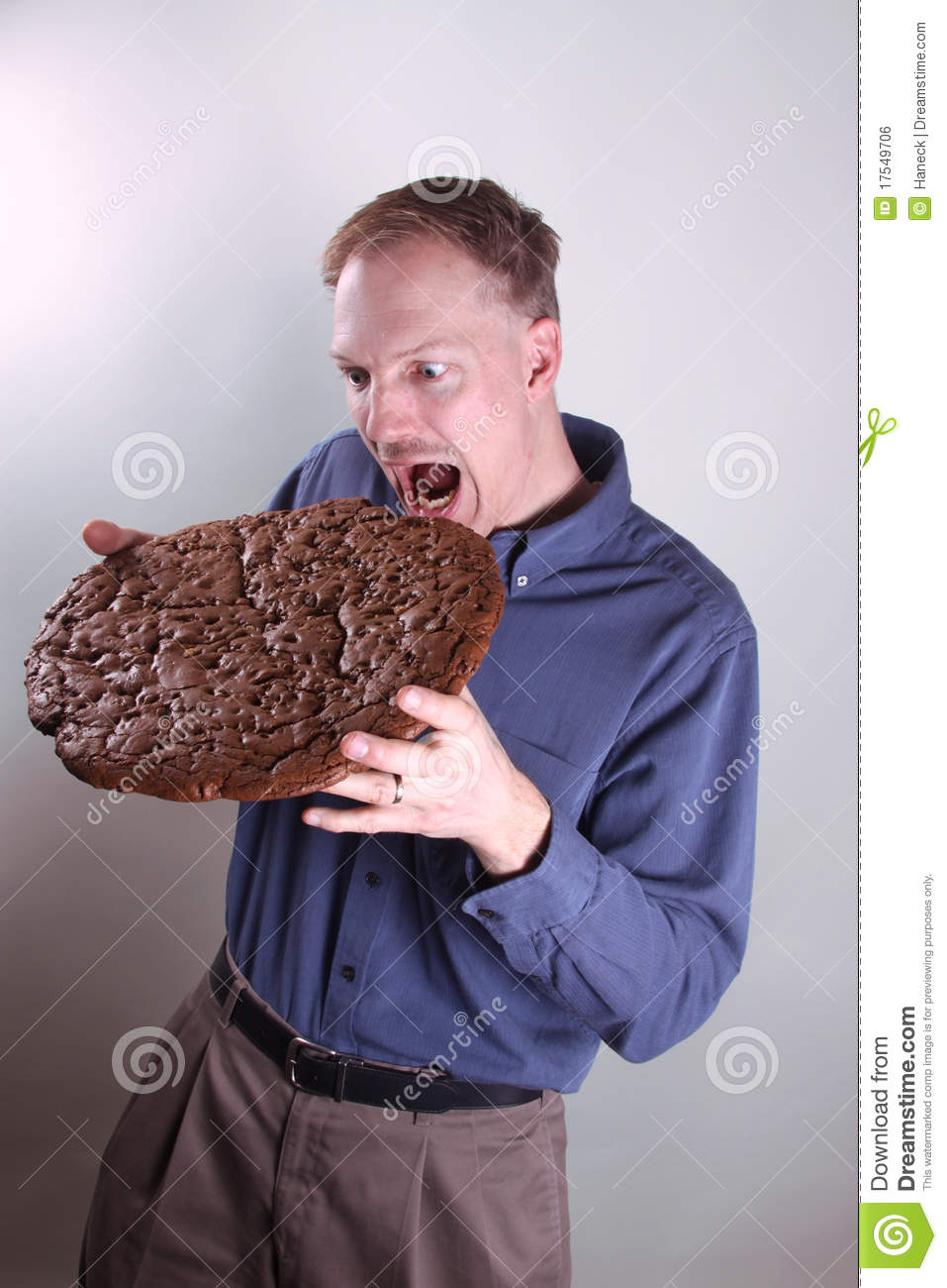 Giant Cookie Royalty Free Stock Image - Image: 17549706