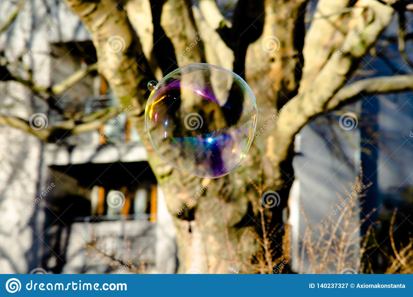 Giant flying soap bubble in city park