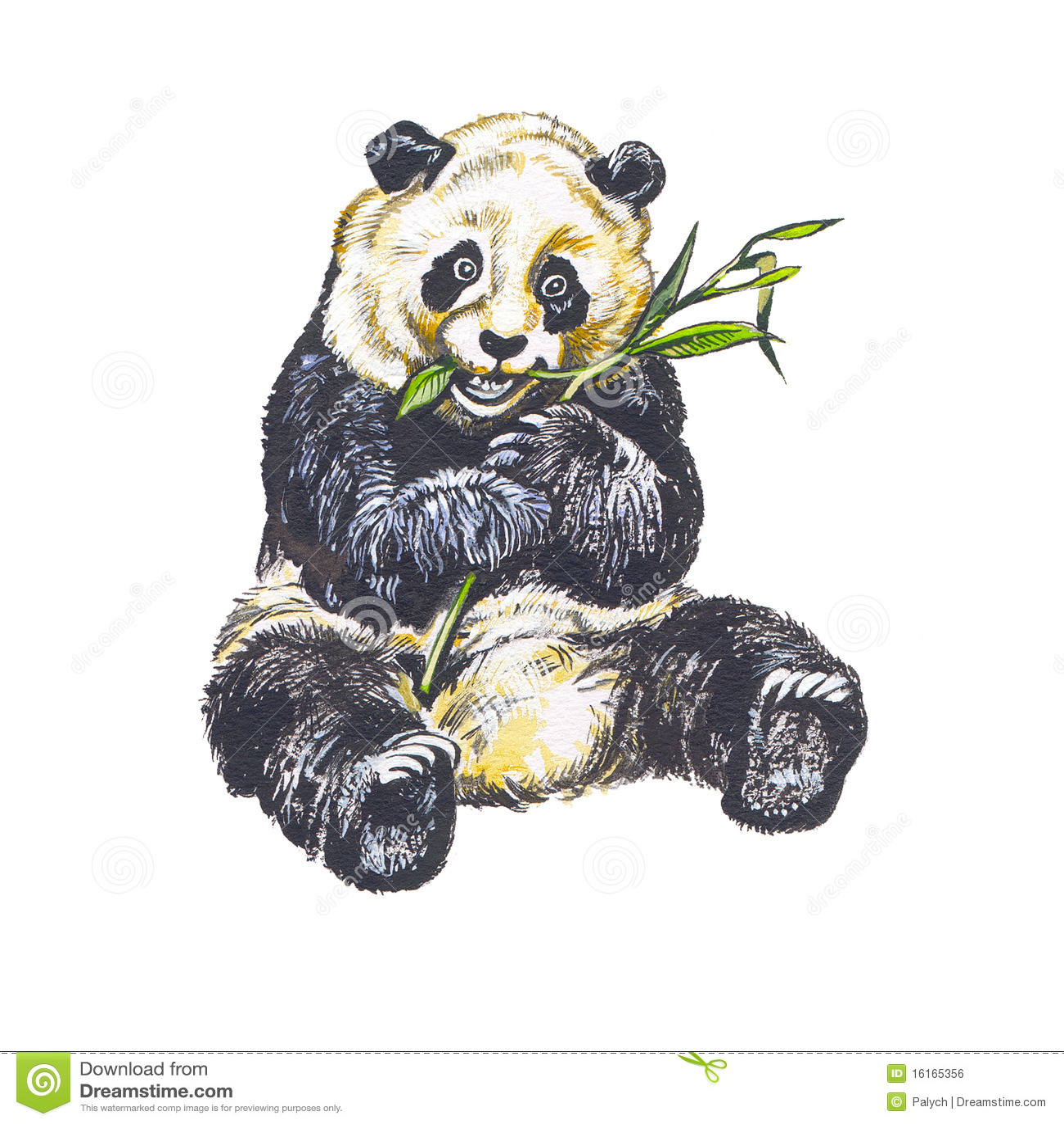 Giant Panda Royalty Free Stock Image Image 16165356