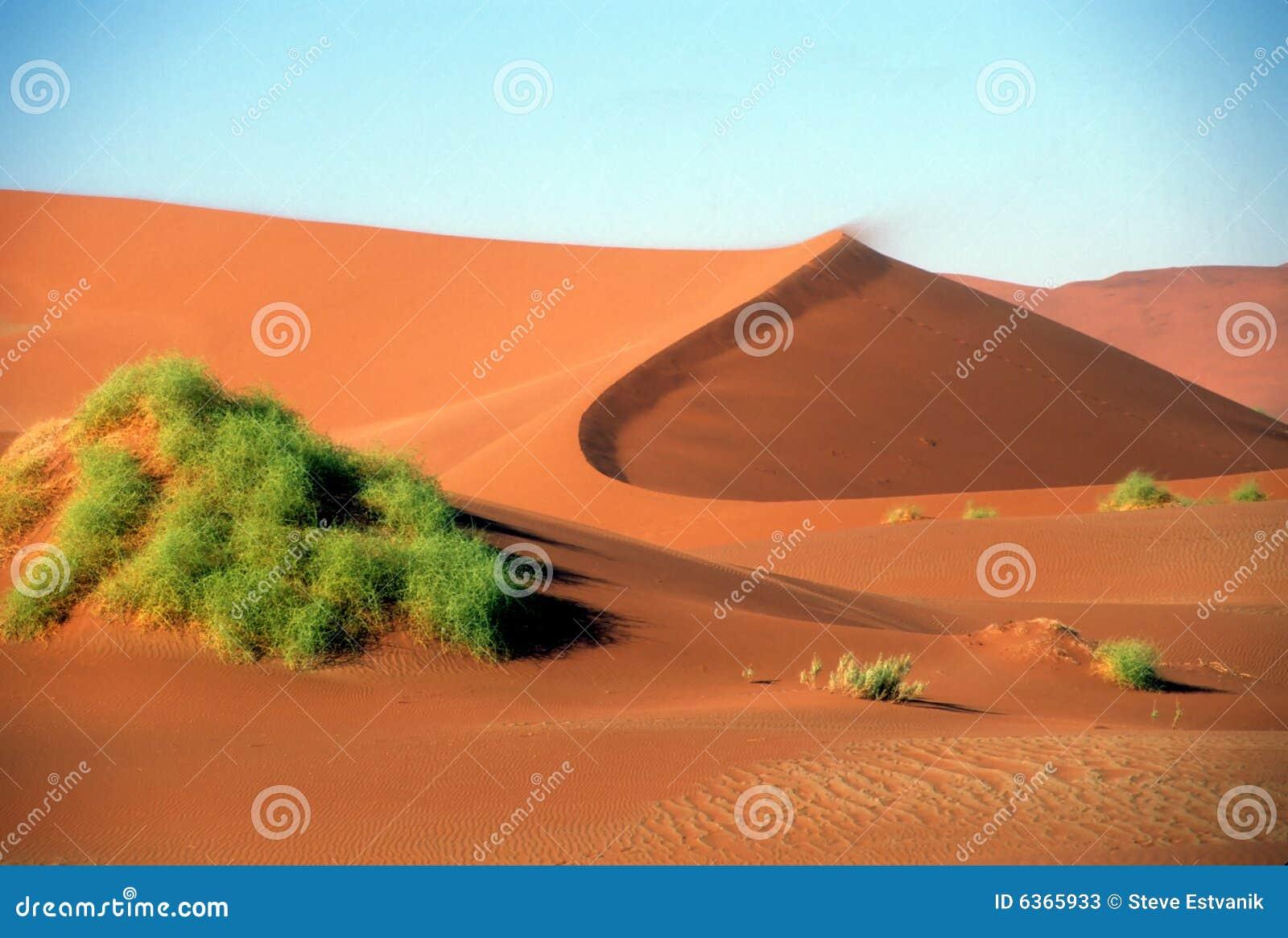 Giant sand dunes in desert
