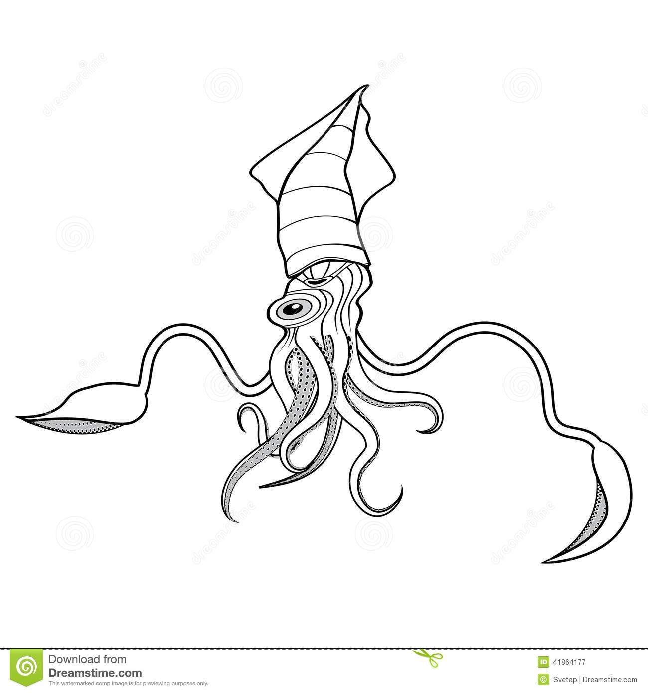 Giant squid illustration stock vector illustration of for Giant squid coloring pages