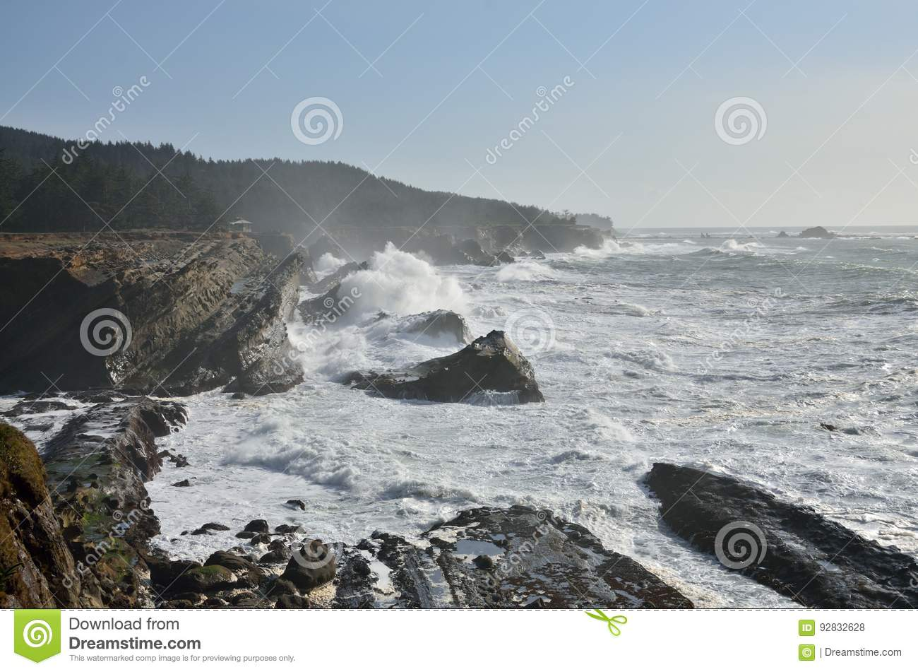 Giant Waves At Shore Acres State Park, Oregon