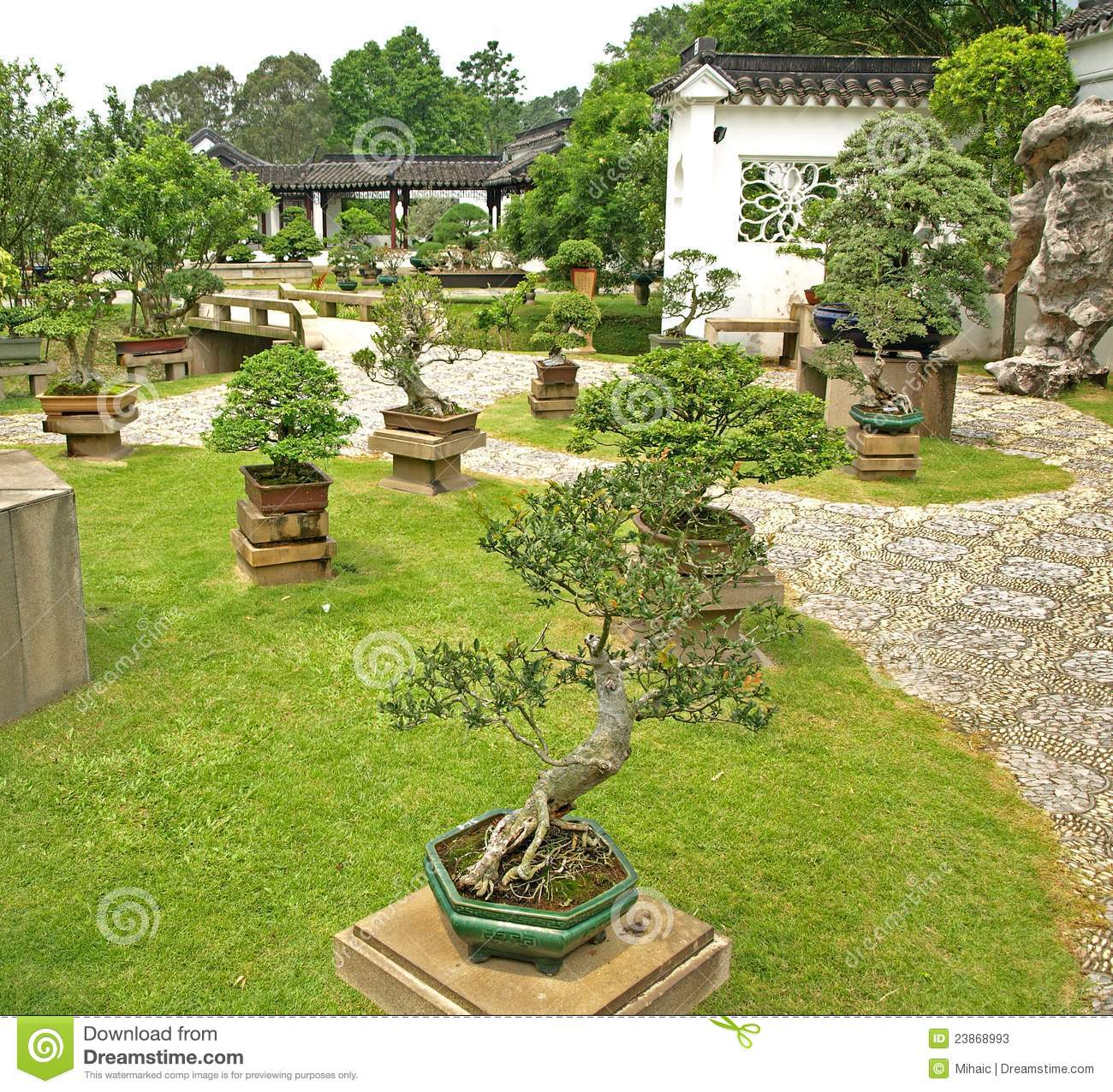 Giardini cinesi immagine stock immagine di contemplation for Bonsai de jardin