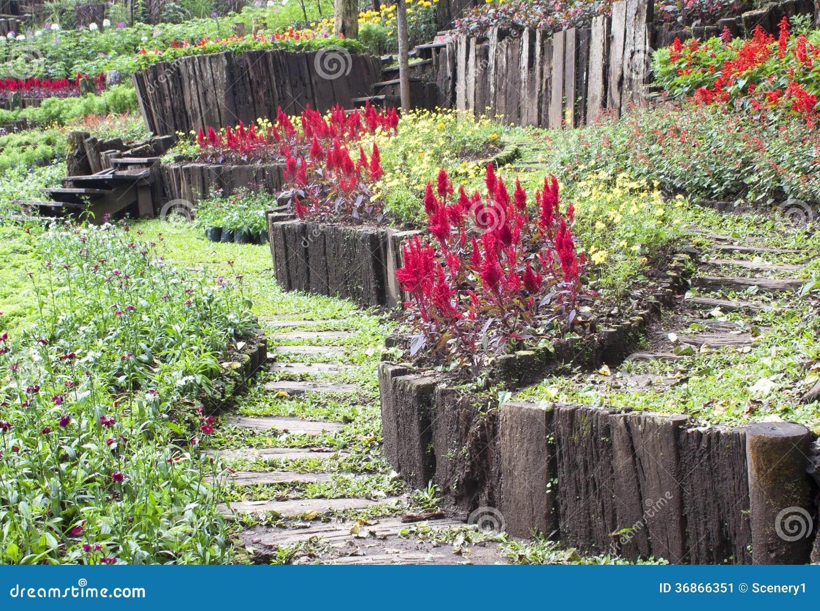 Giardini pubblici e cespugli pianta e fiori immagine - Giardini e fiori ...