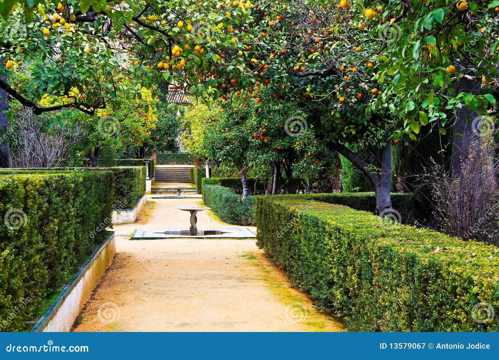 Giardini reali di alcazar in siviglia spagna fotografia - Giardini decorati ...