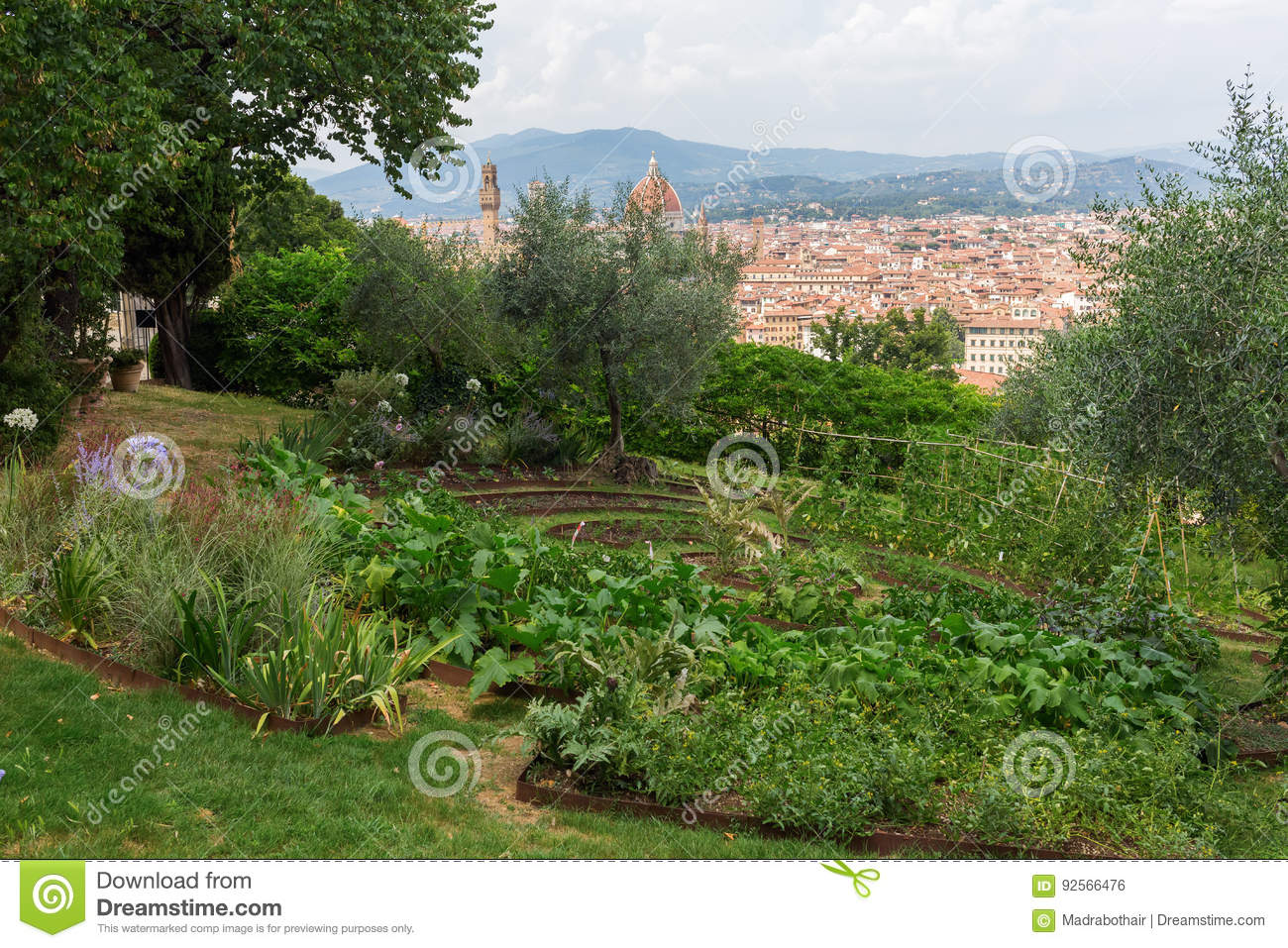 Giardino Bardini With View Over Florence Italy Editorial Photo