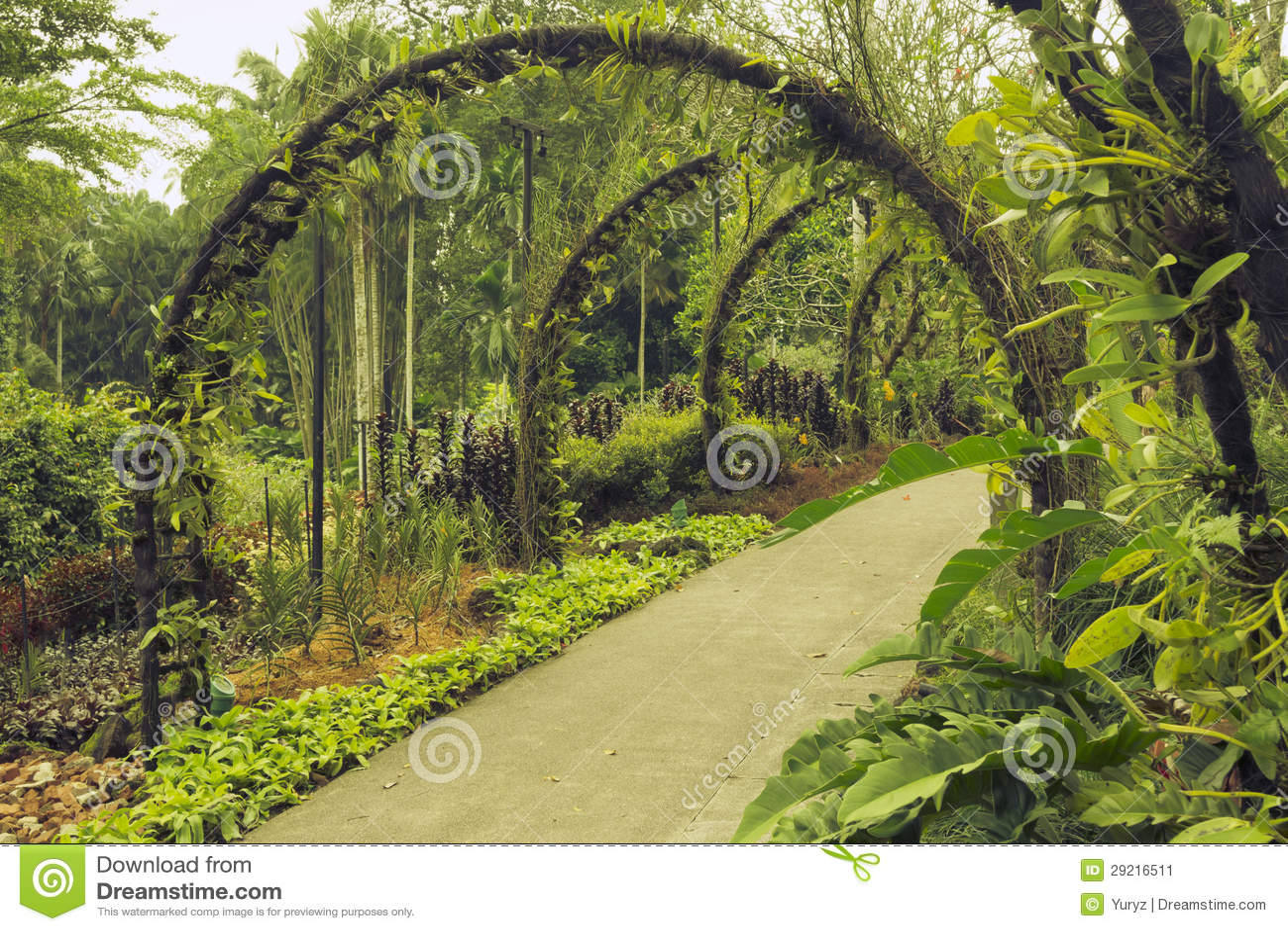 Giardino botanico di singapore immagine stock immagine for O jardin des beautes