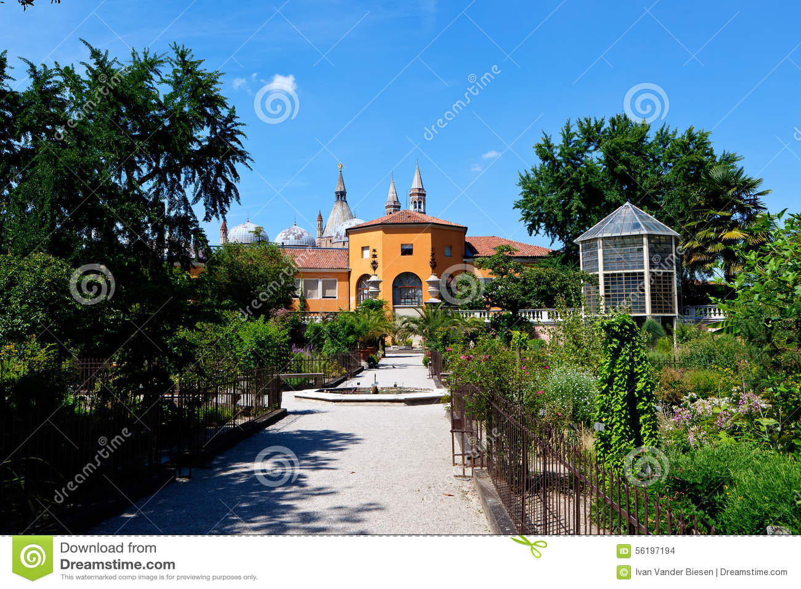 File padova giardino botanico g wikipedia