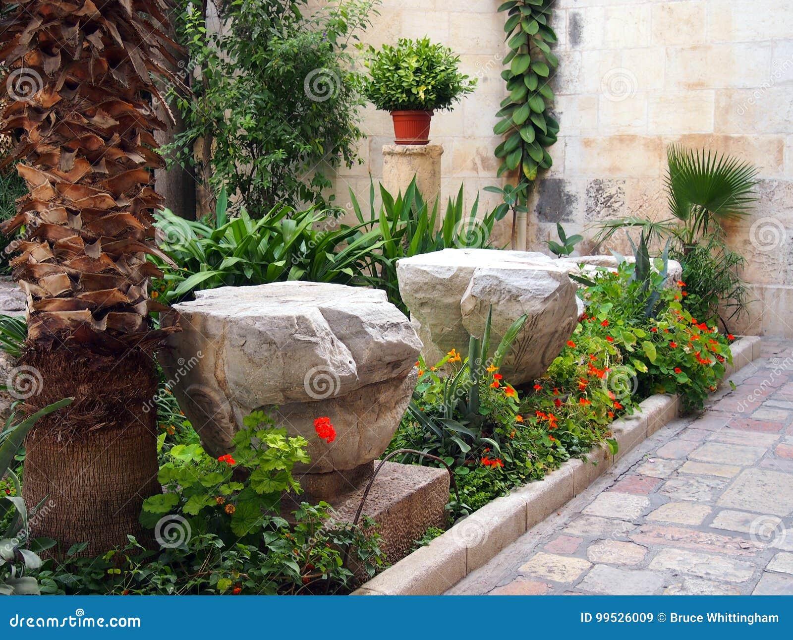 Giardino convenzionale in cortile pavimentato