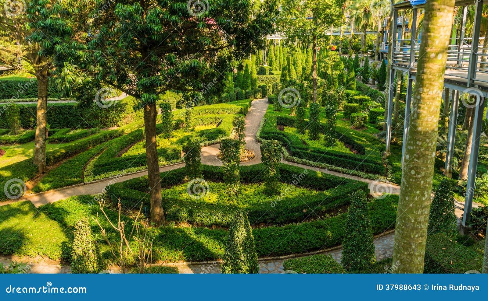 Giardino dei colori del giardino tropicale tailandia di - Giardino tropicale ...