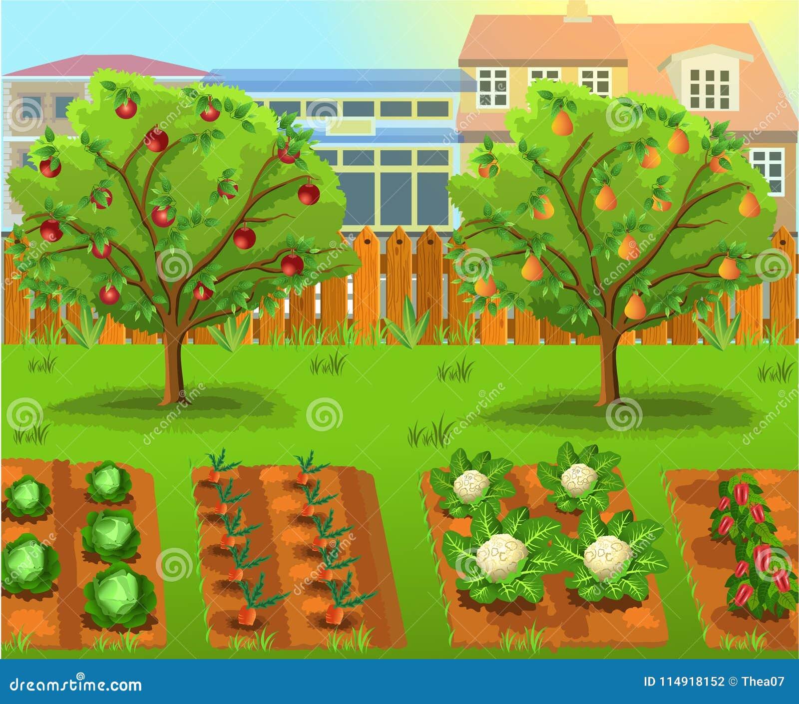 Prezzi Alberi Da Giardino giardino del fumetto con gli alberi da frutto e del verdura