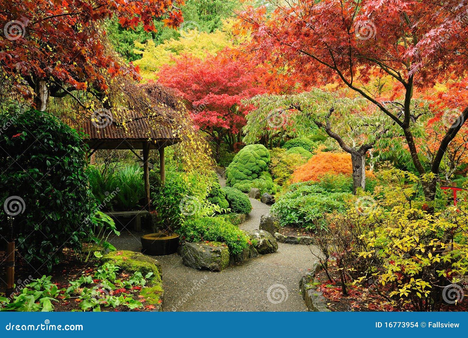 Giardino del giapponese di autunno